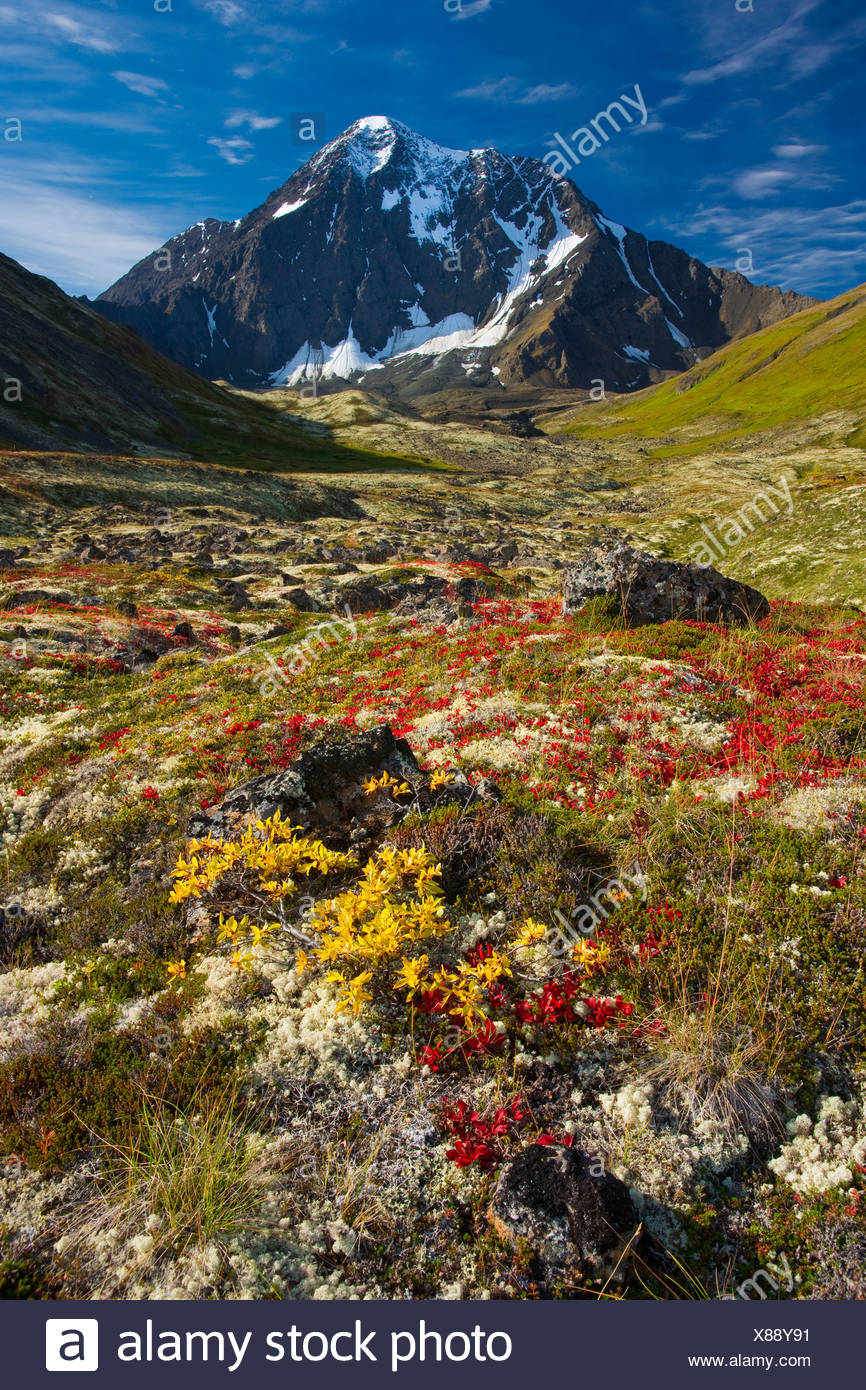 Scenic view of Bold Peak and colorful Fall tundra, Chugach State Park, Southcentral Alaska - Stock Image