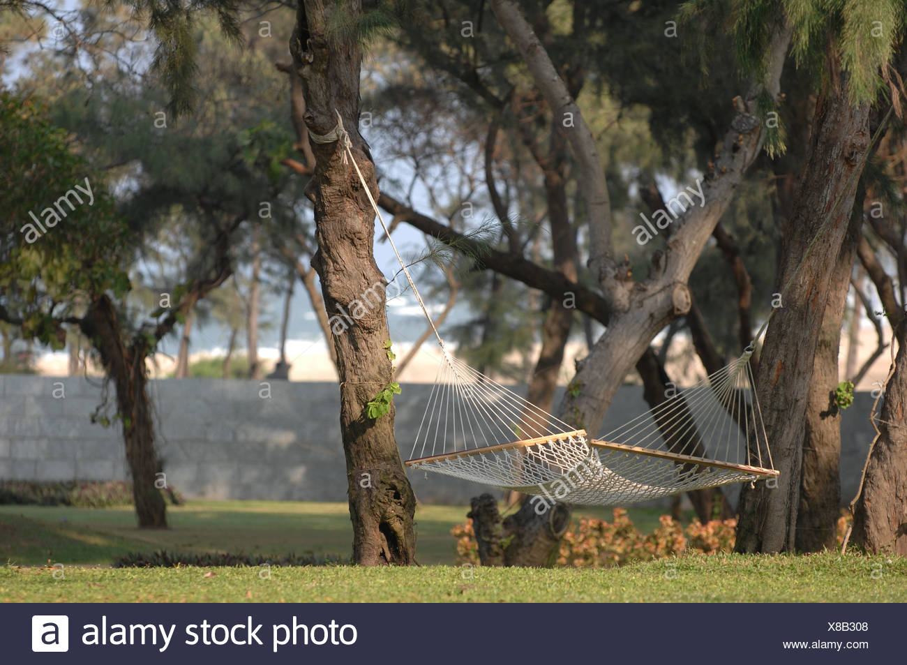 Hammock Hanging From Trees Stock Photo 280526968 Alamy
