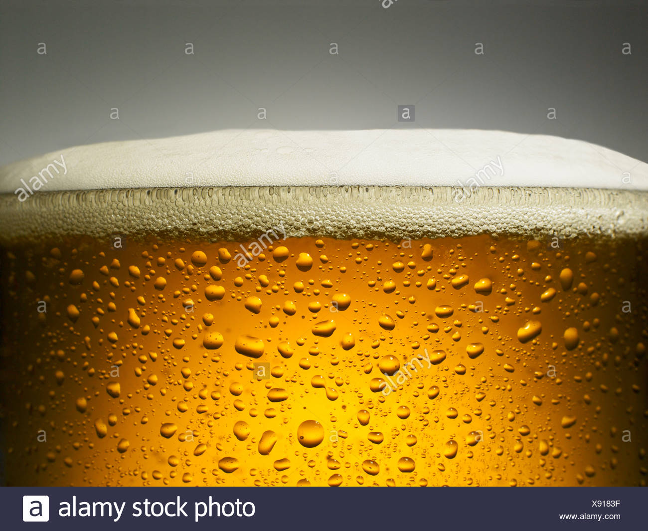 Close up of glass of beer - Stock Image