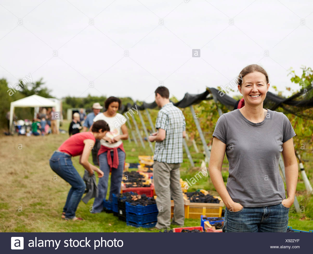 A group of young people, grape pickers, family and the founder of the vineyard celebrating the end of the picking. - Stock Image