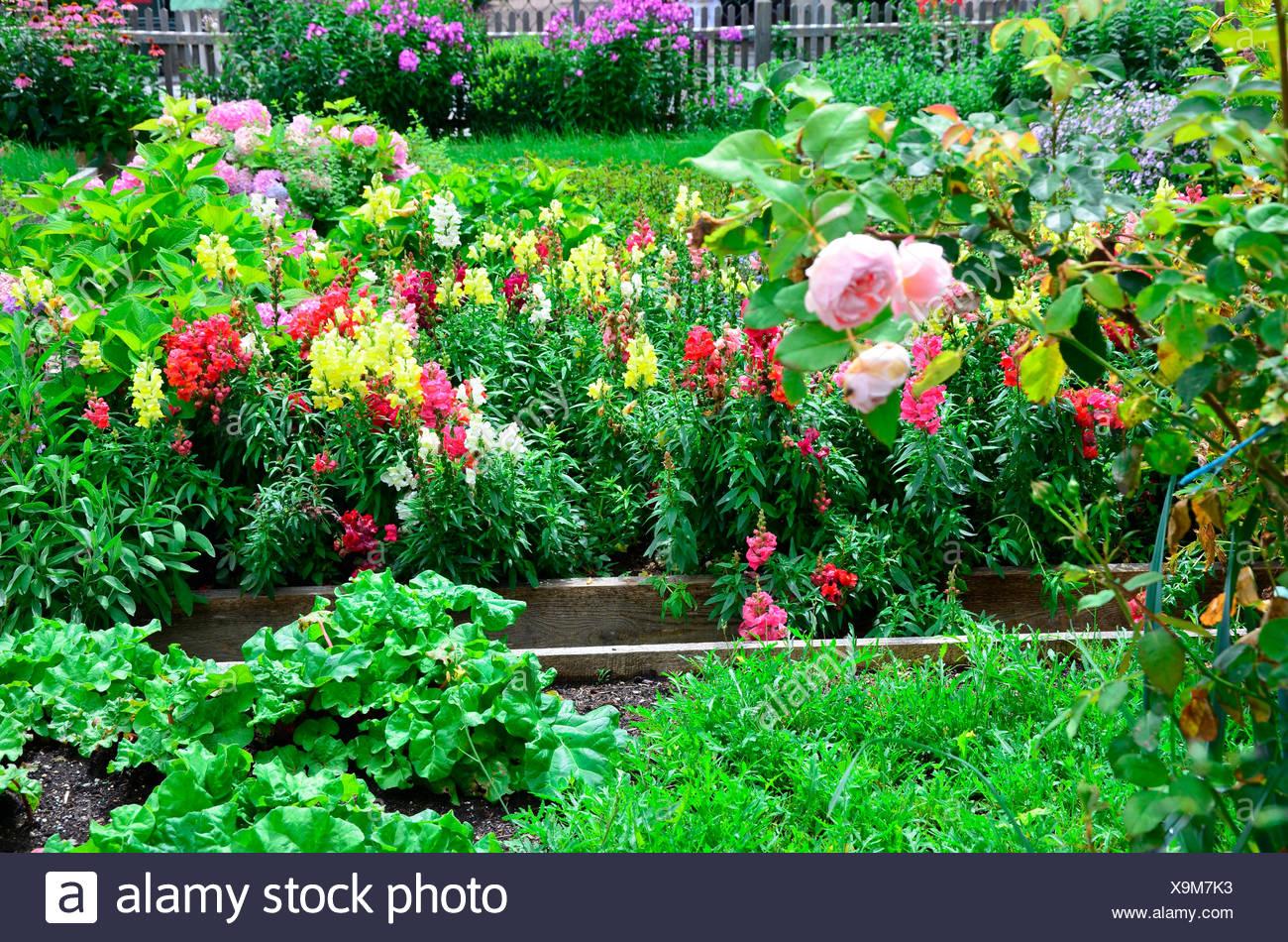 Beste Blumengarten Färbung Bilder Zeitgenössisch - Druckbare ...