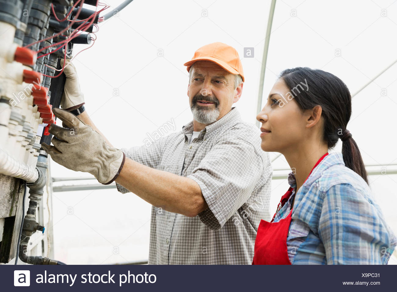 Workers checking equipment in greenhouse - Stock Image