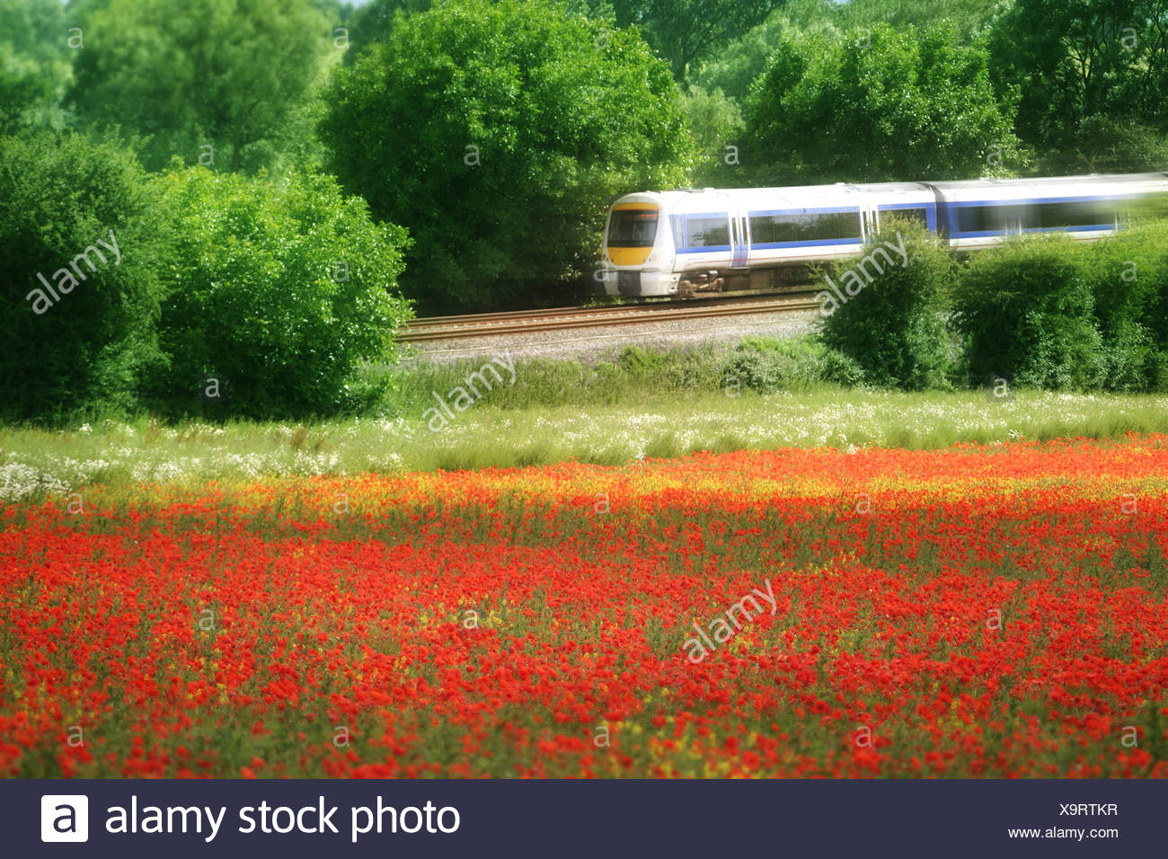 train 2 - Stock Image