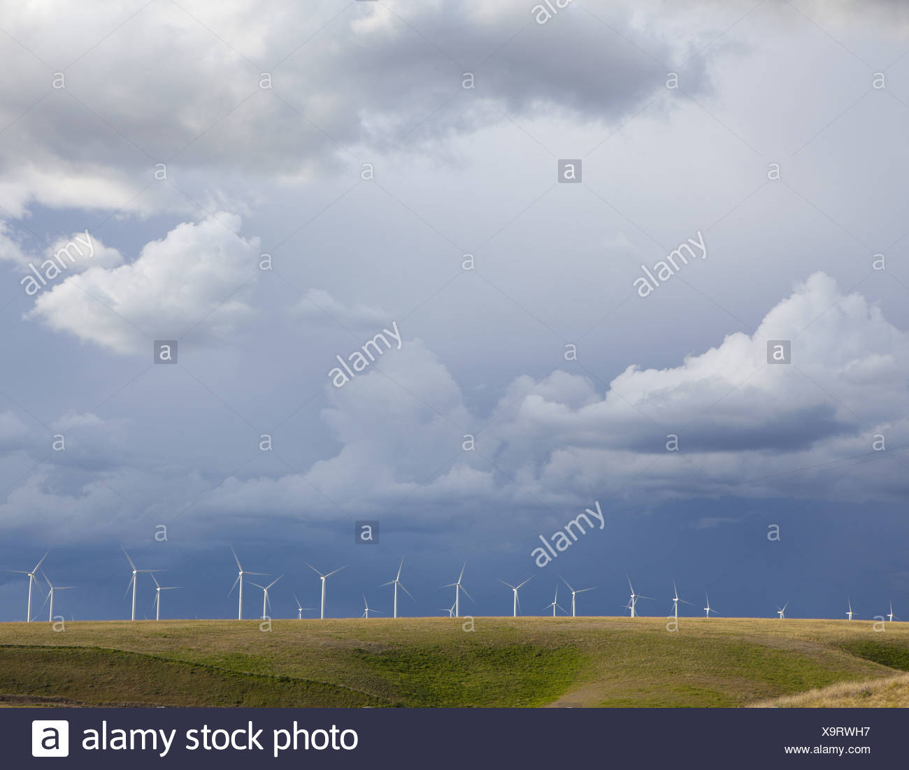 Washington USA line of wind turbines on ridge against stormy sky - Stock Image