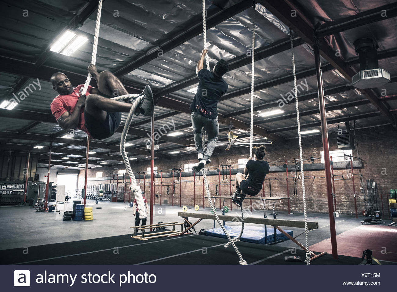 Men and women climbing ropes in gym - Stock Image