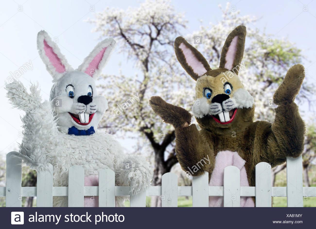 Garden Fence Easter Bunny Wave Half Portrait Spring Season