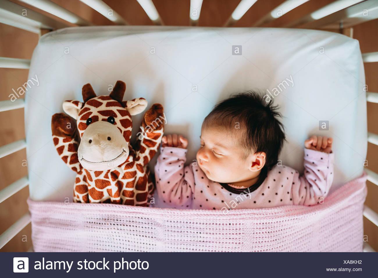 420a690b9 Newborn baby girl sleeping in crib with a plush giraffe Stock Photo ...