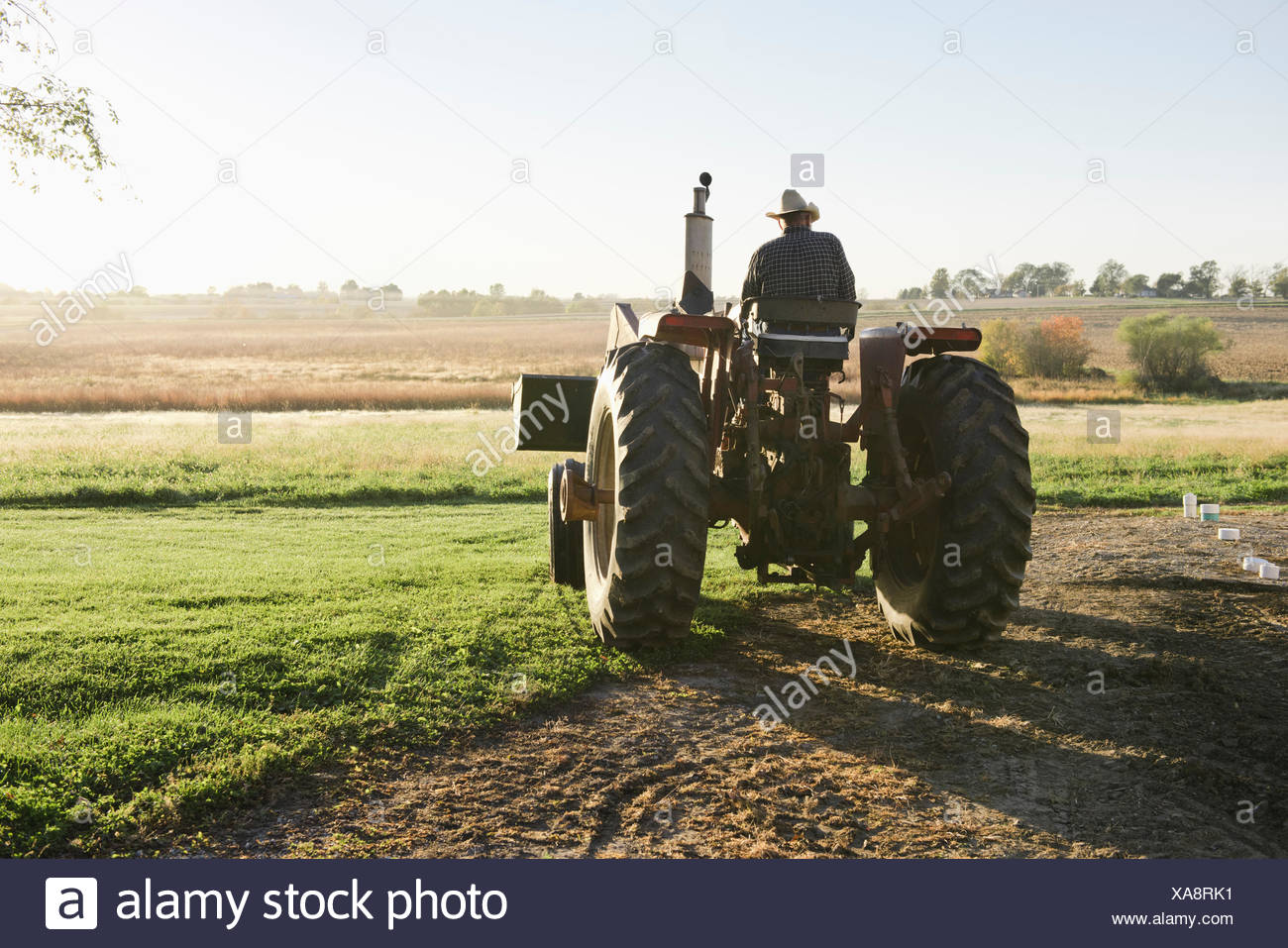 Rear view of senior male farmer driving tractor in field, Plattsburg, Missouri, USA - Stock Image