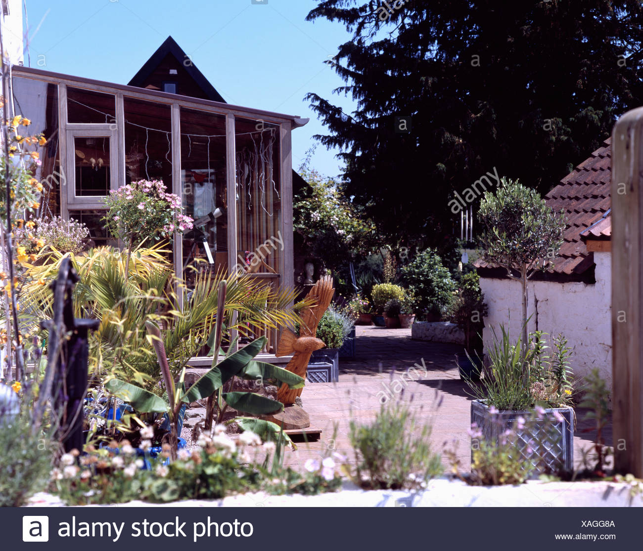 . Paving with tropical plants in pots in front of modern house Stock