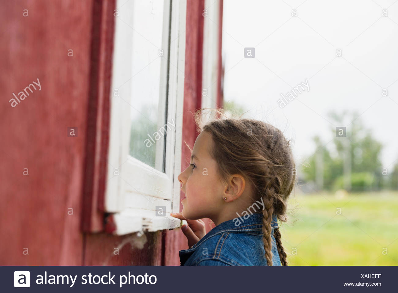 Curious girl looking inside window - Stock Image
