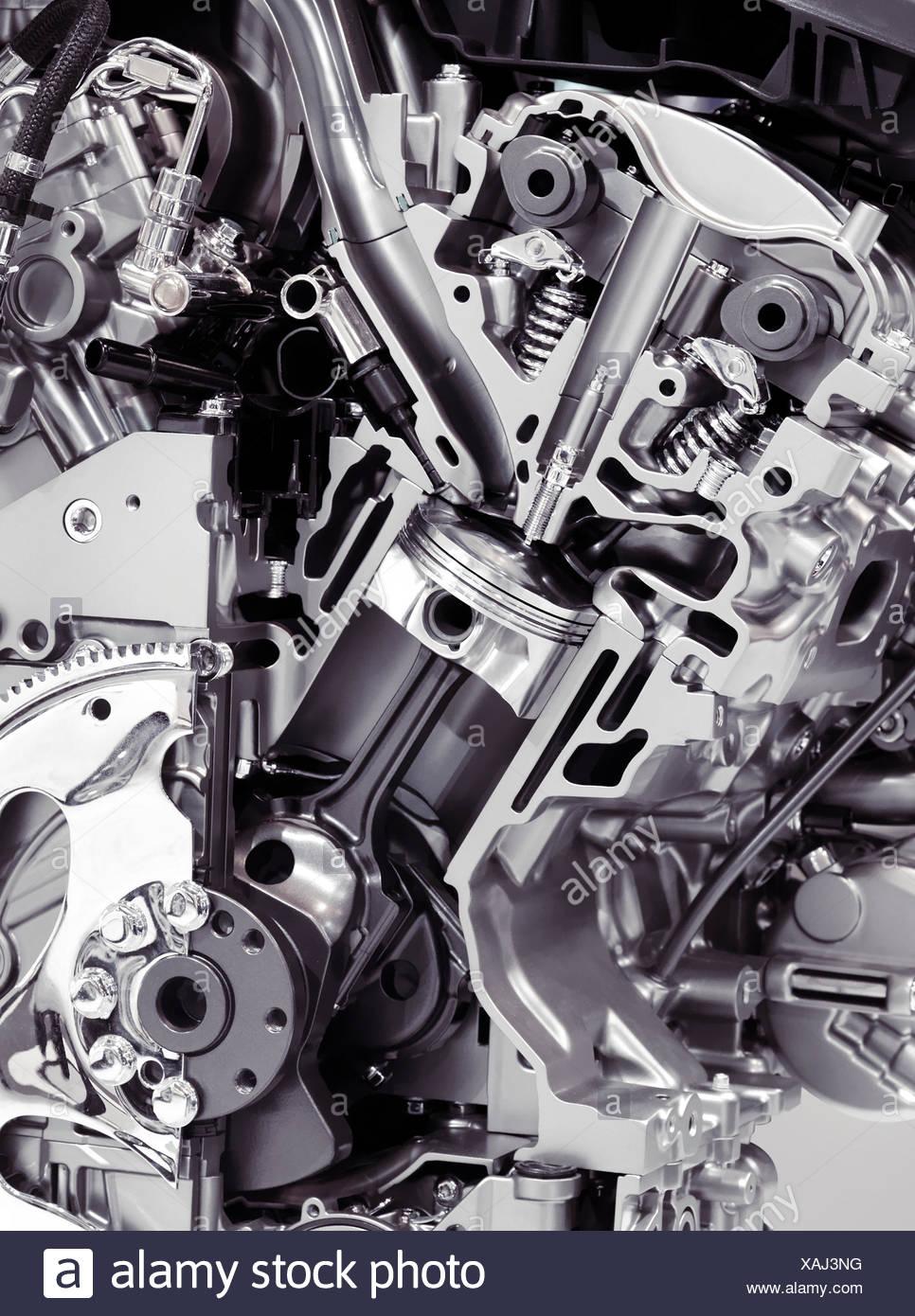 Toyota Sienna Service Manual: TS and CG Terminal Circuit