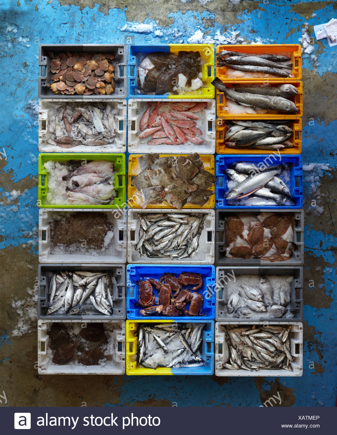 Overhead view of creates of seafood - Stock Image