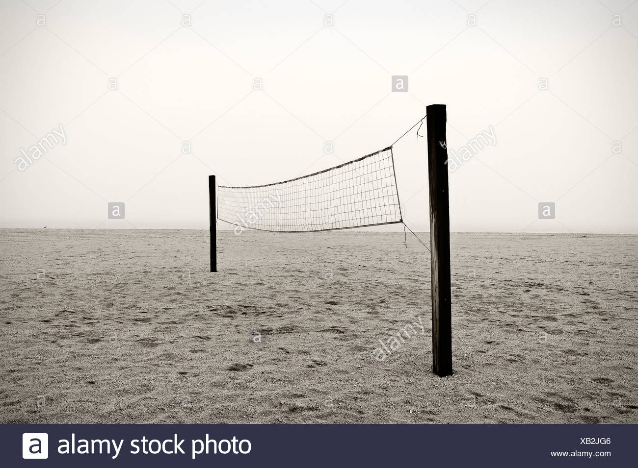Beach volleyball net - Stock Image