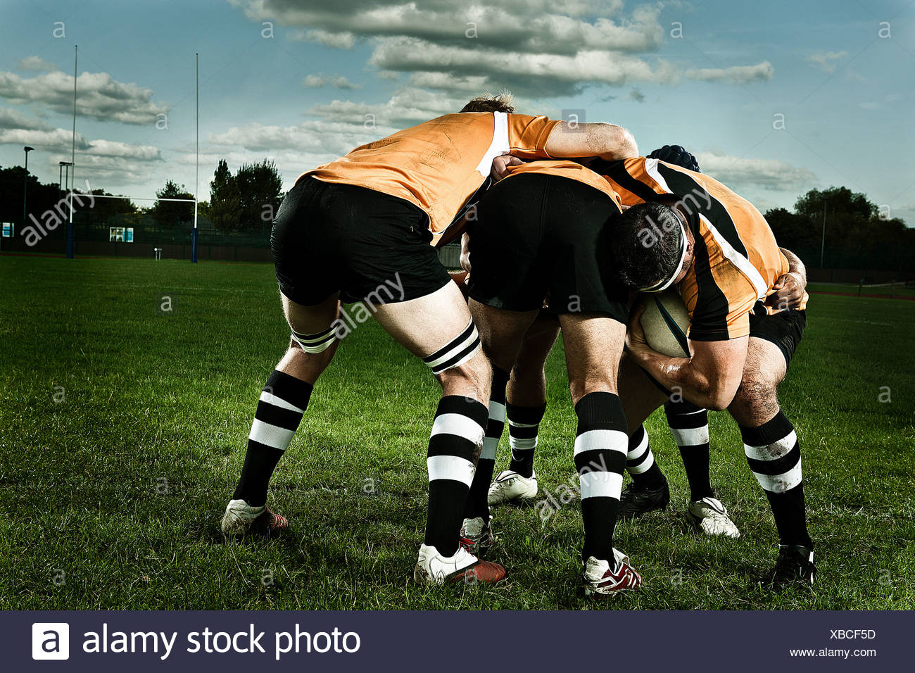 Rugby players in scrum on pitch - Stock Image