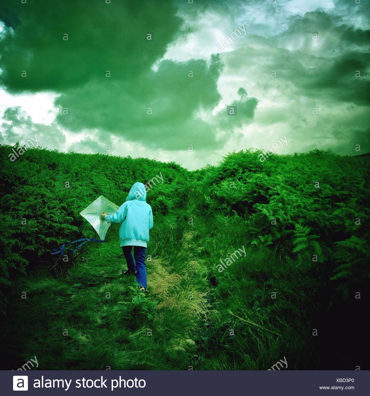 Rear View Of Boy In Hood With Kite Walking On Green Landscape Against Cloudy Sky - Stock Image