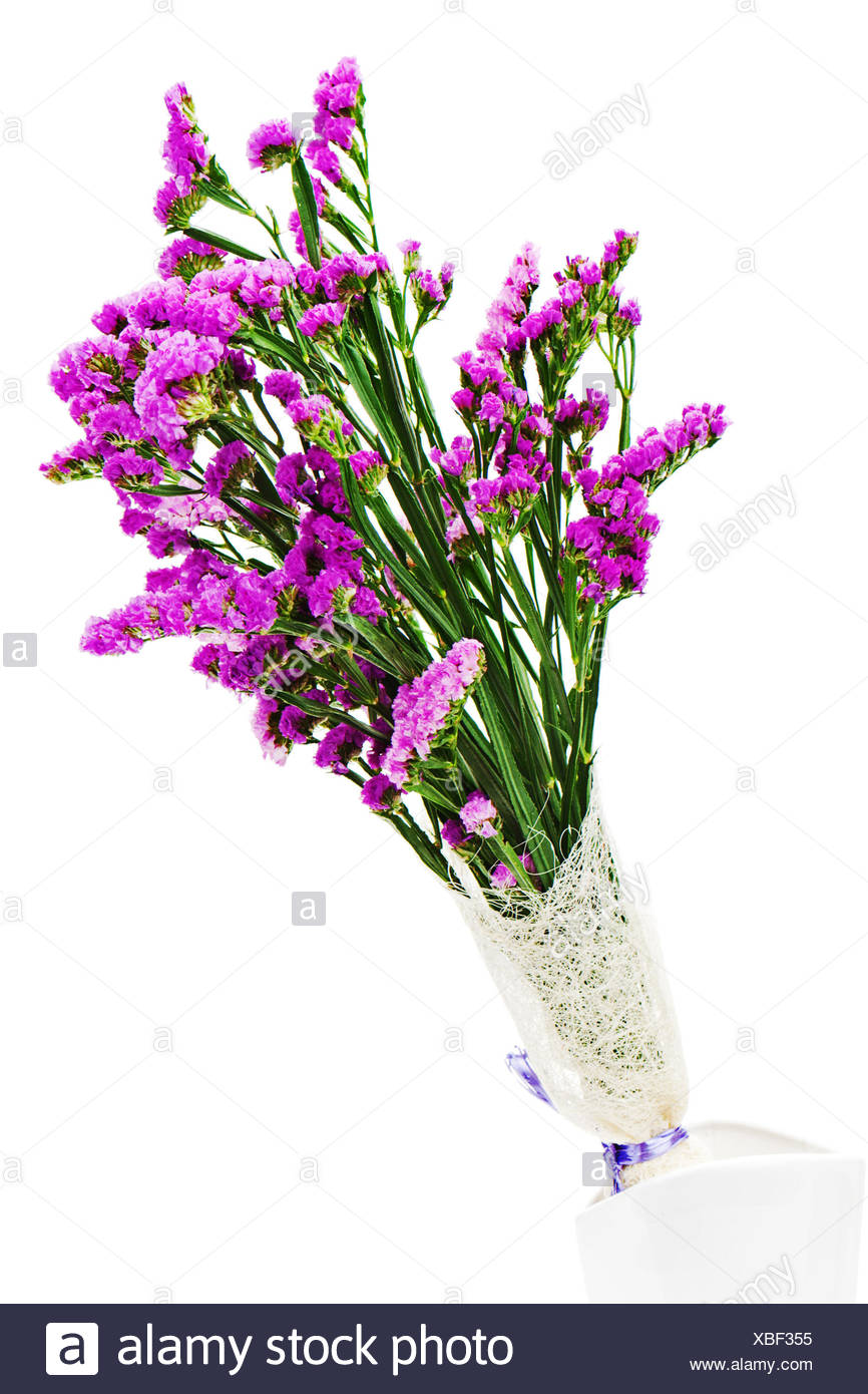Bouquet From Purple Statice Flowers In Vase Isolated On White