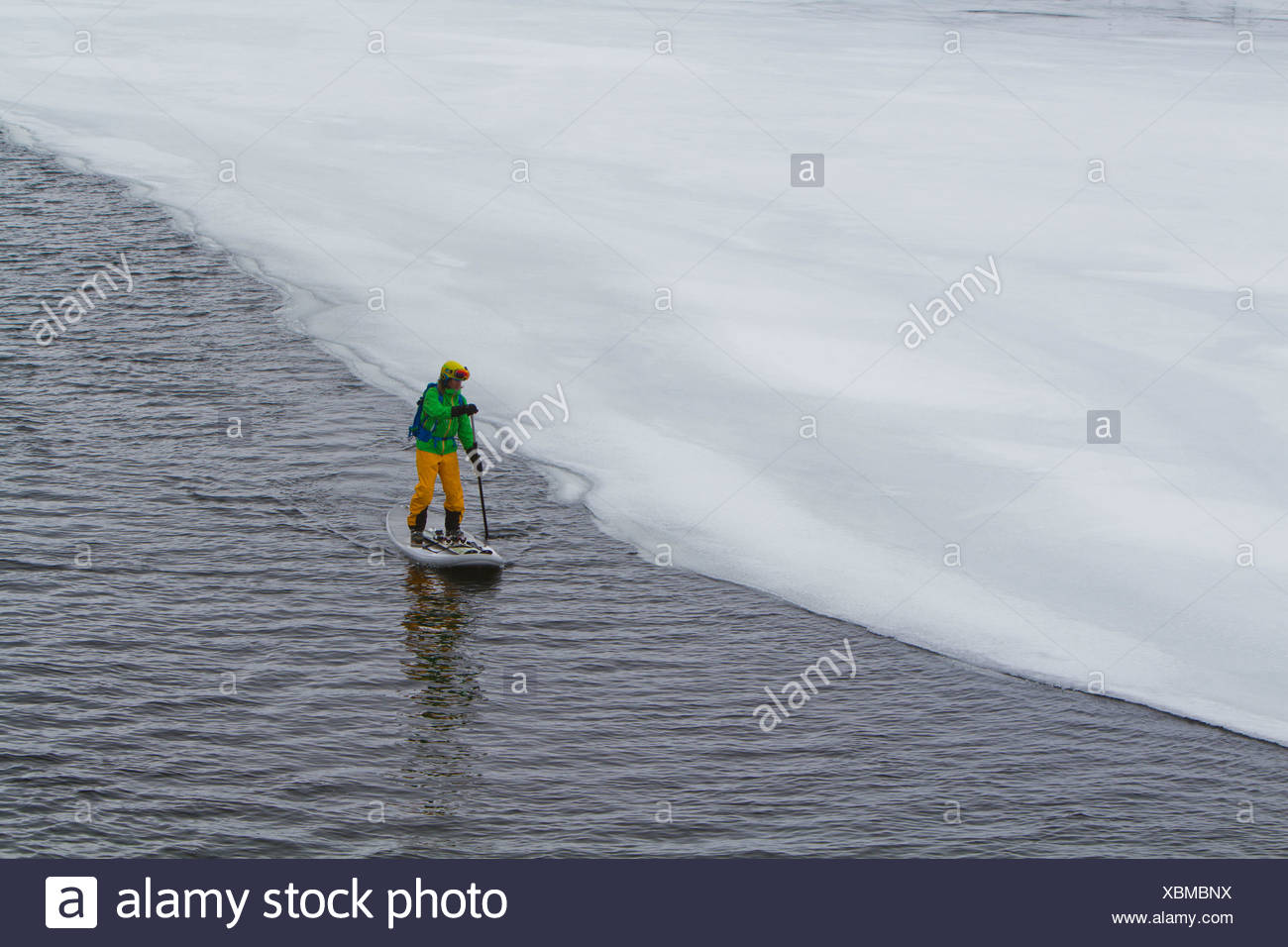 Norway, Narvik, Mature man paddling in polar ocean - Stock Image