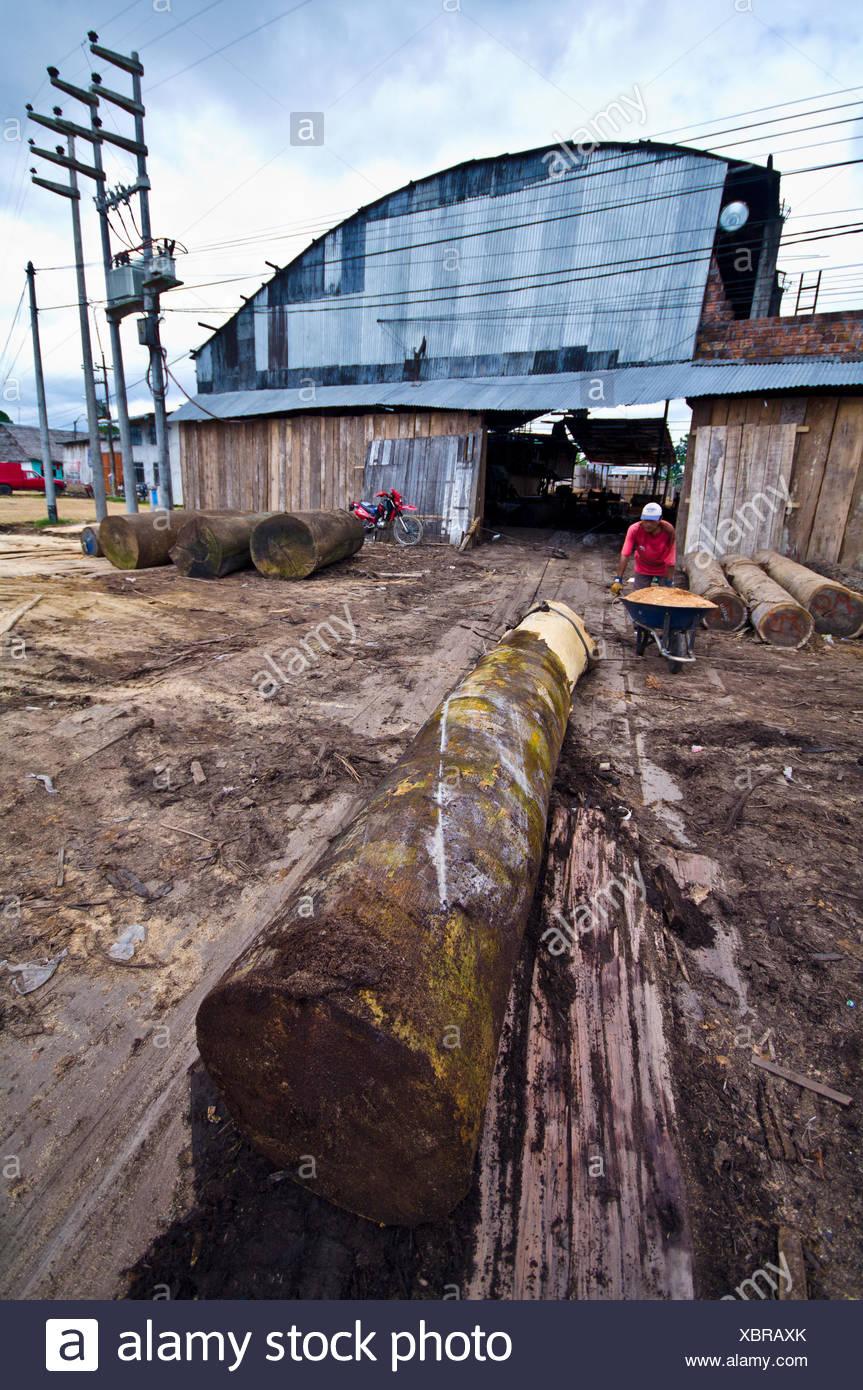 Metal logging 33