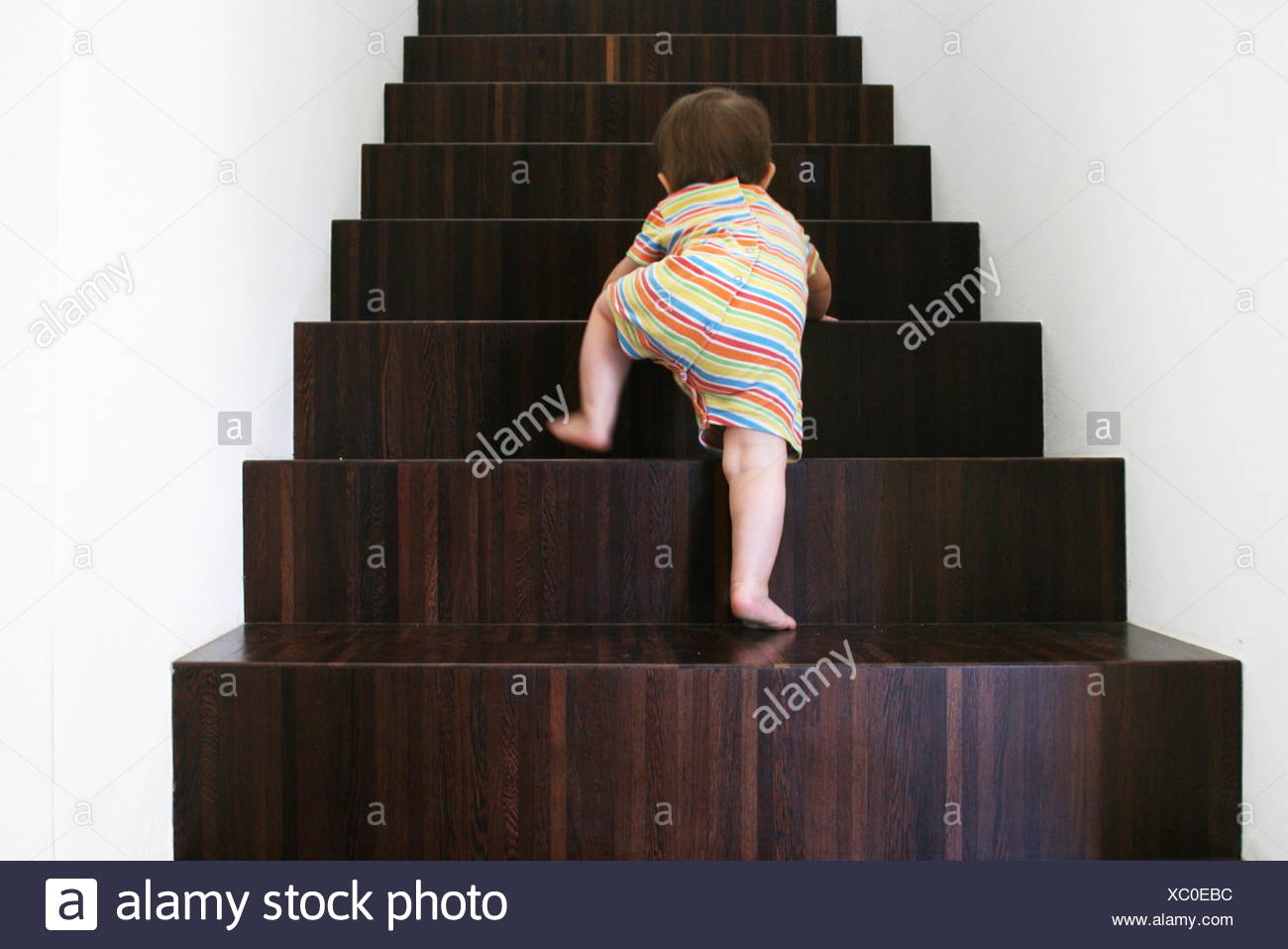 Baby climbing wooden stairs - Stock Image