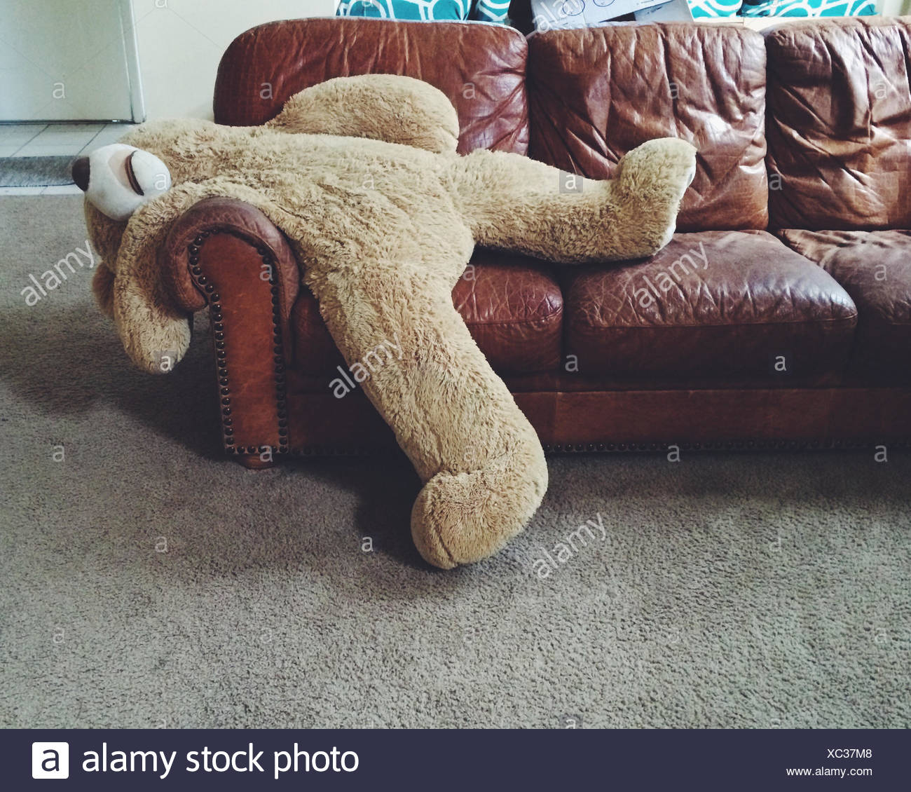 Stuffed teddy bear laying on couch - Stock Image