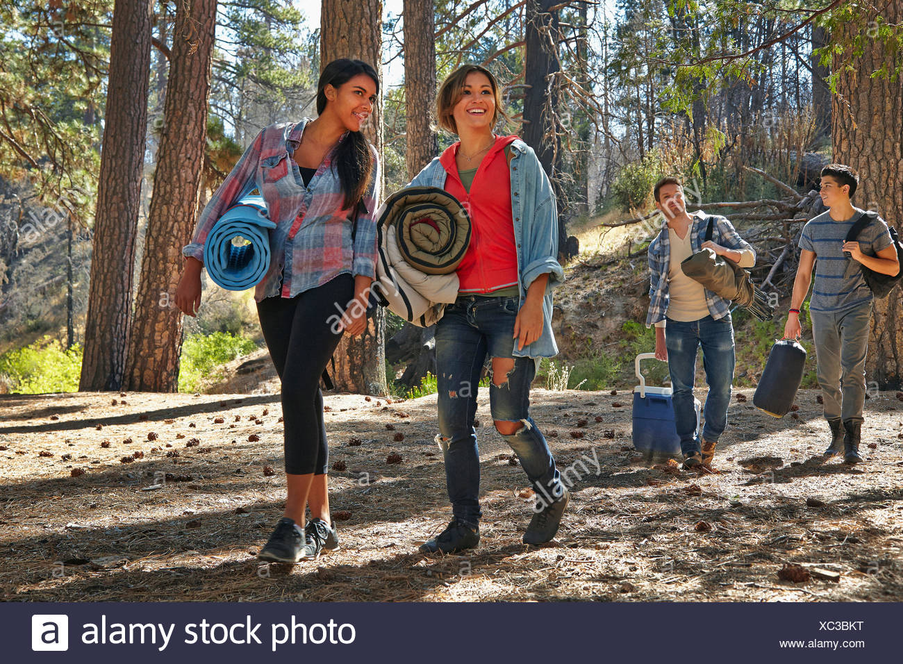 Four young adult friends walking in forest with camping equipment, Los Angeles, California, USA - Stock Image