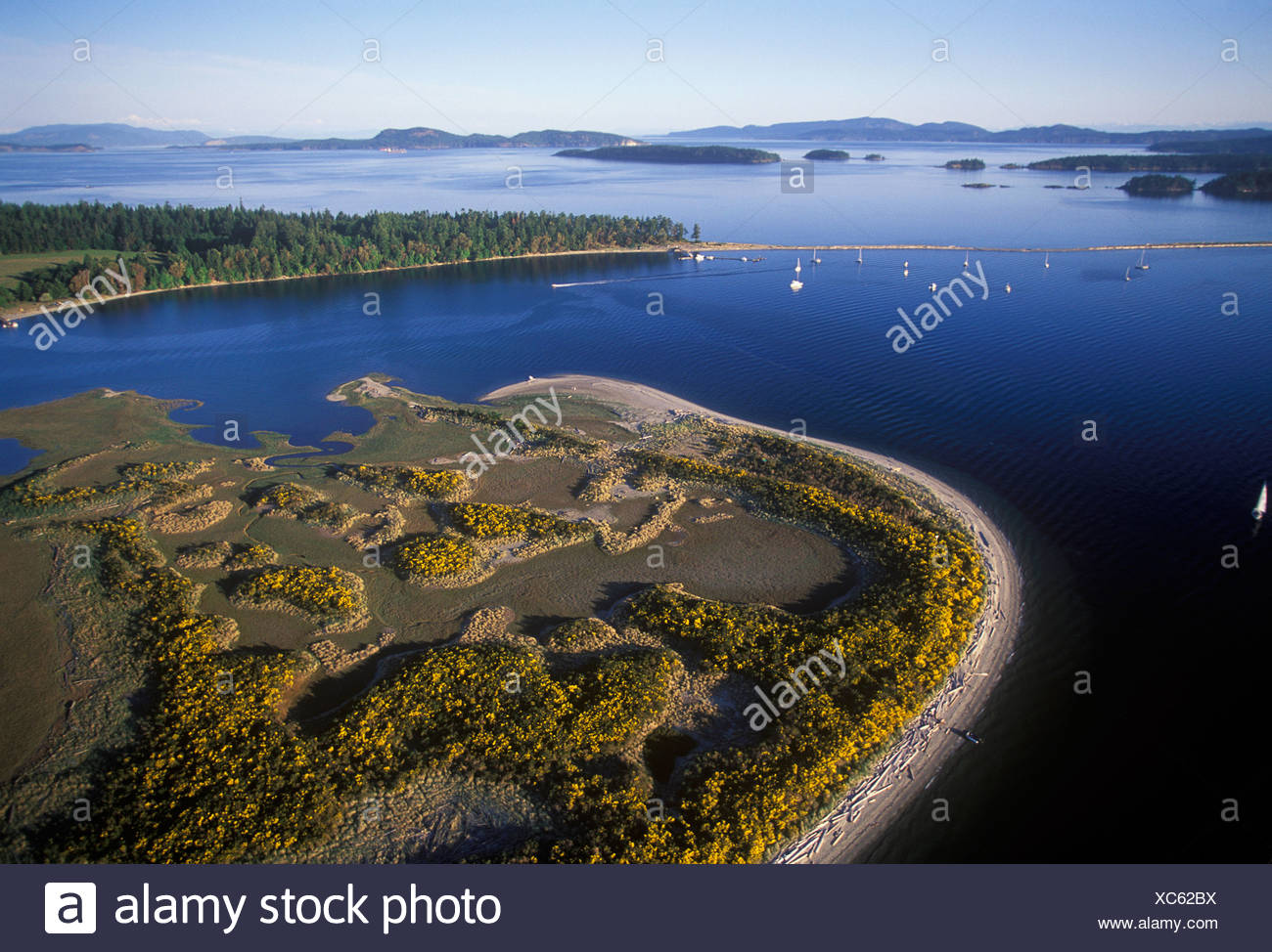 Aerial of Sidney Spit, Vancouver Island, British Columbia, Canada. - Stock Image