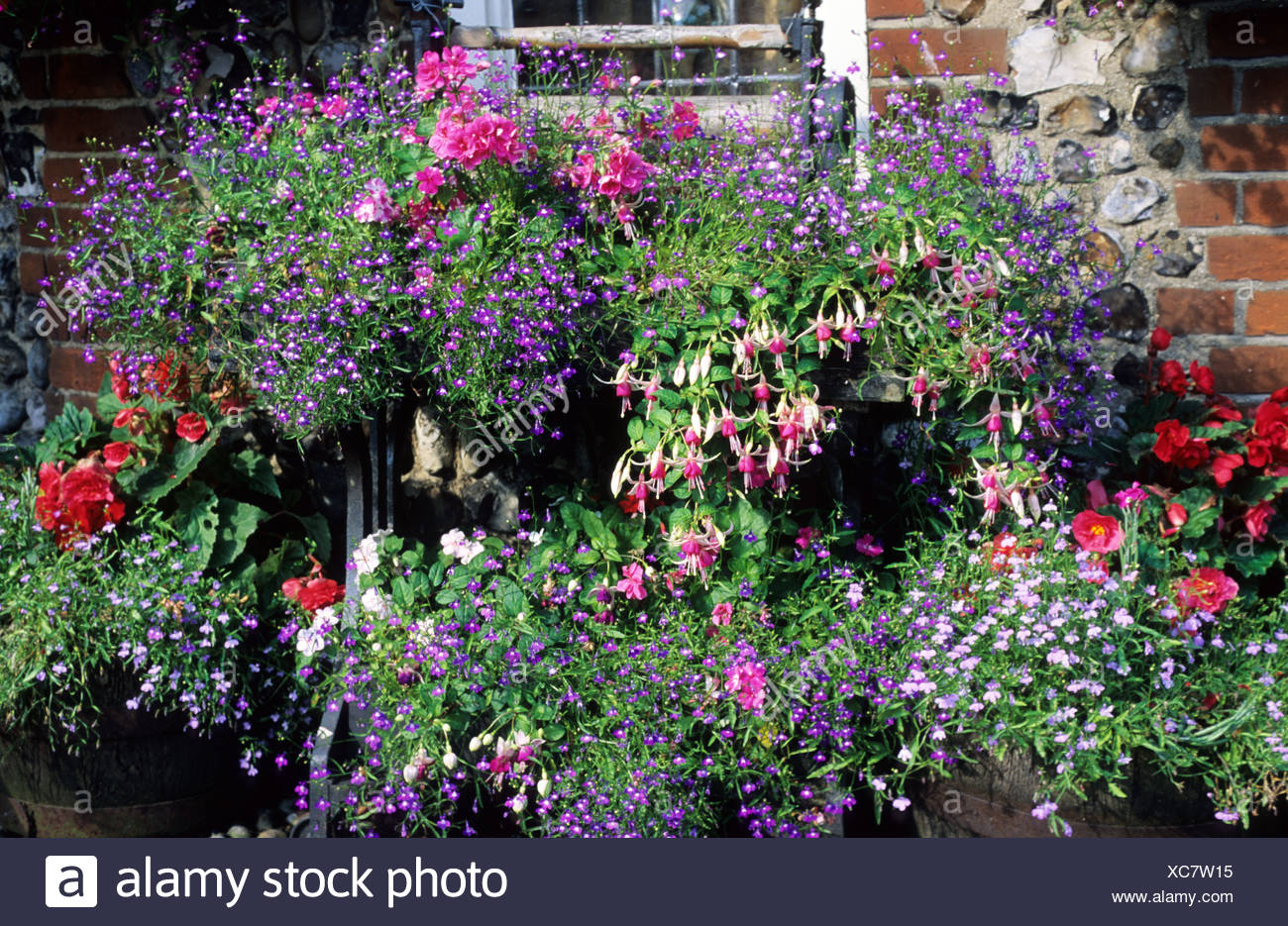 Container Plants, Fuchsia, Begonia, On Antique Mangle Stand , Pots, Planters,  Patio Garden