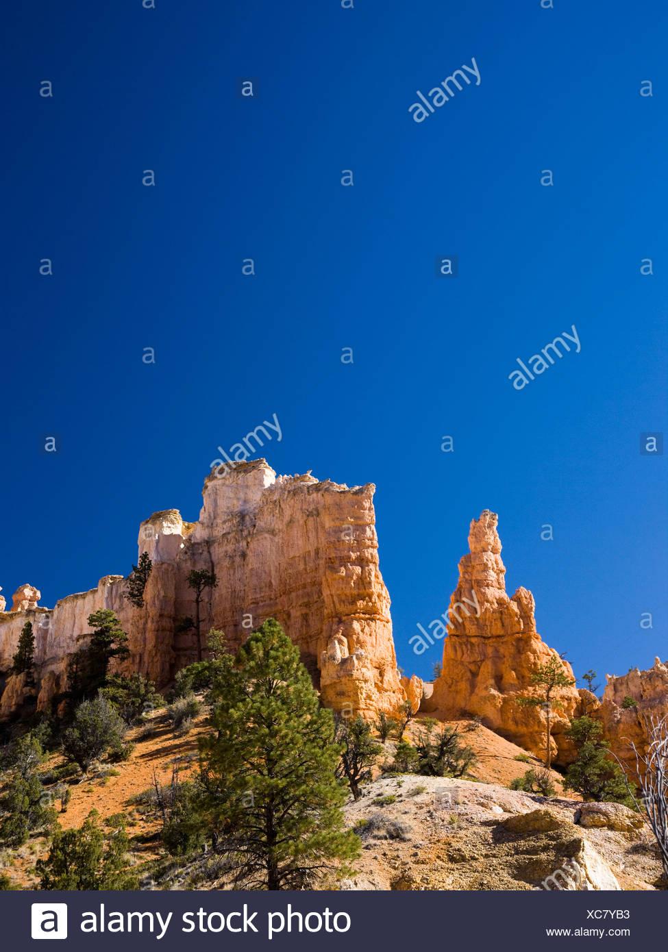 desert landscape - Stock Image