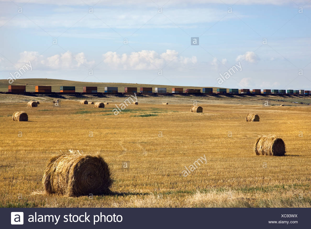 Bales of hay in field with freight train in distance - Stock Image
