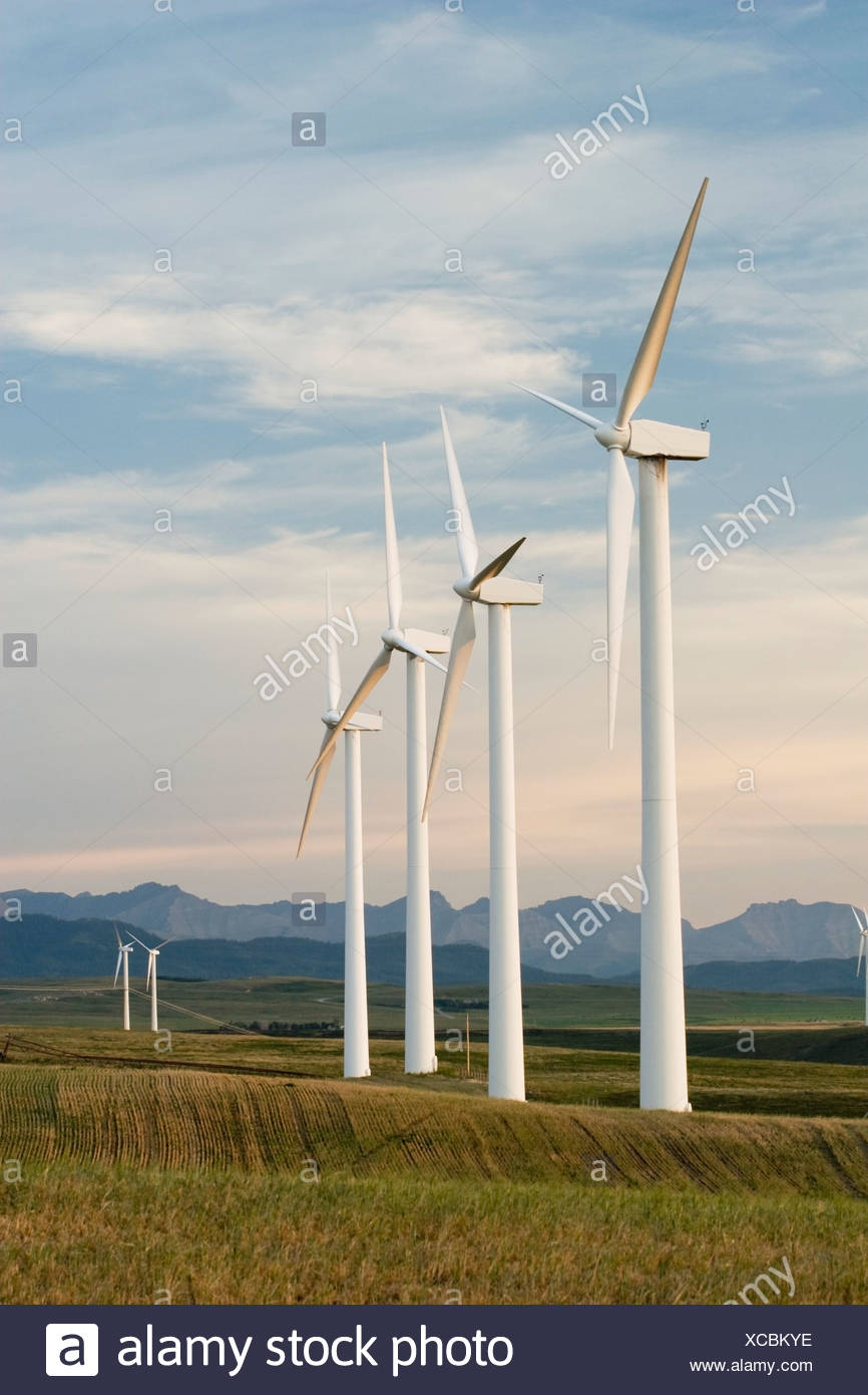 Pincher Creek, Alberta, Canada; Wind Turbines In A Row And Mountains In The Background - Stock Image