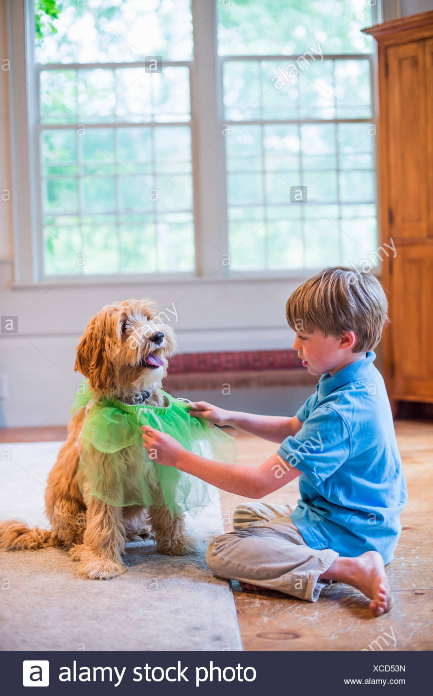 Young boy playing dress up with pet dog - Stock Image