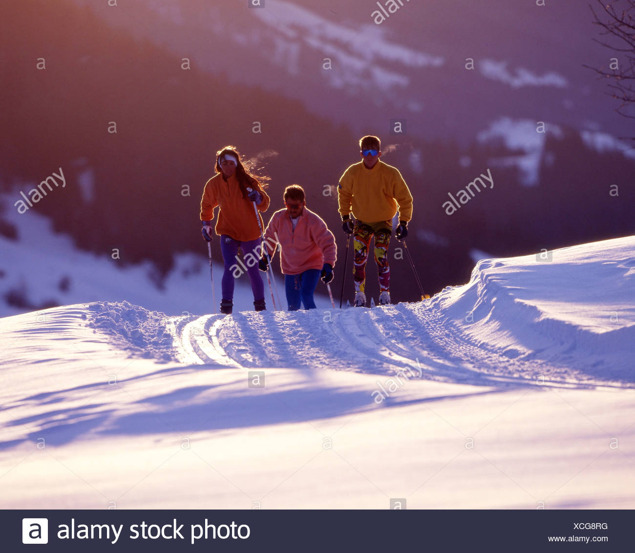 cross-country skiing cross-country skiing winter winter sports group mood - Stock Image
