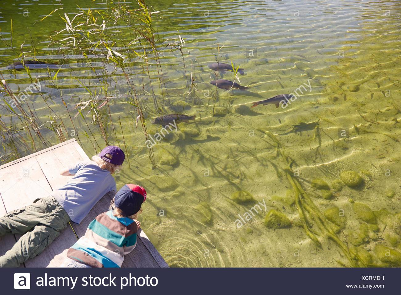 Two boys lying on jetty, looking in water, elevated vew - Stock Image