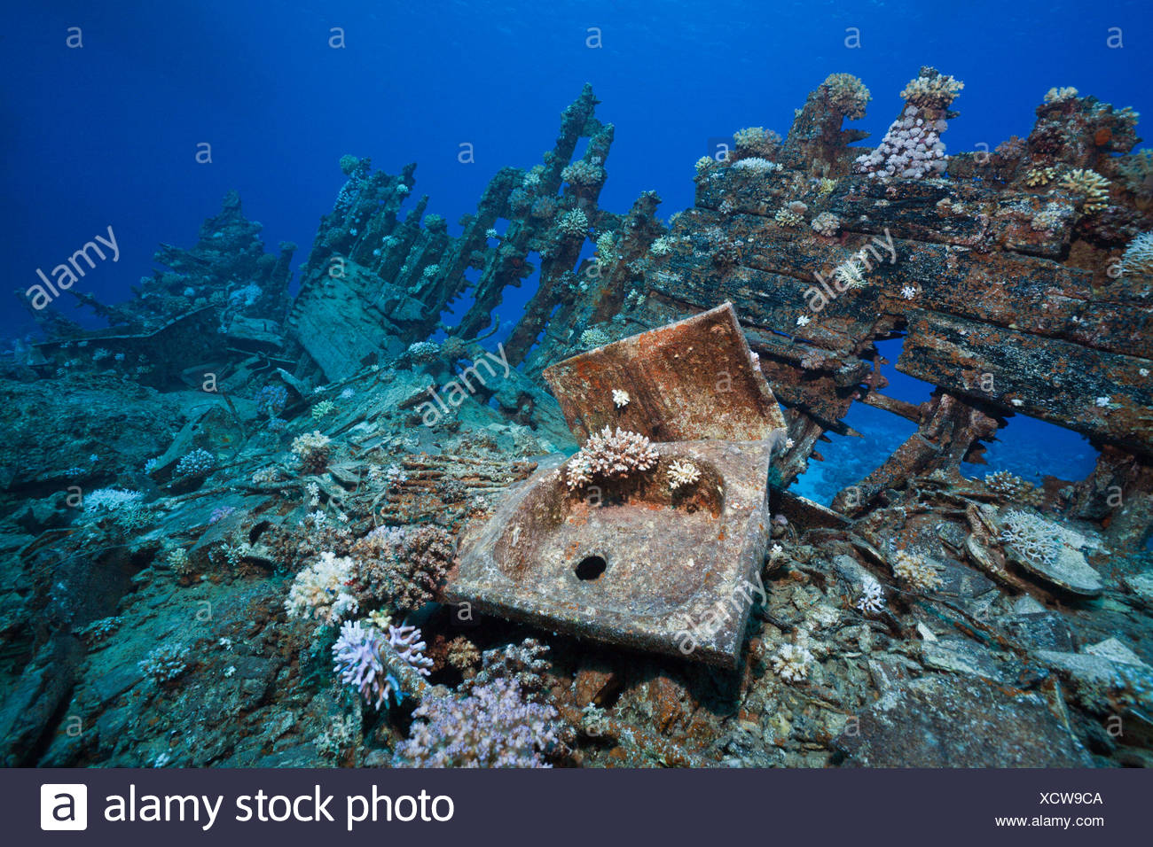 Wreckage of Heaven One Wreck, Abu Dabab Reef, Red Sea, Egypt - Stock Image