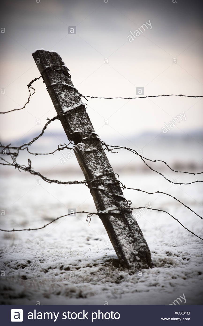 Old fence post and barbed wire in the snow. - Stock Image