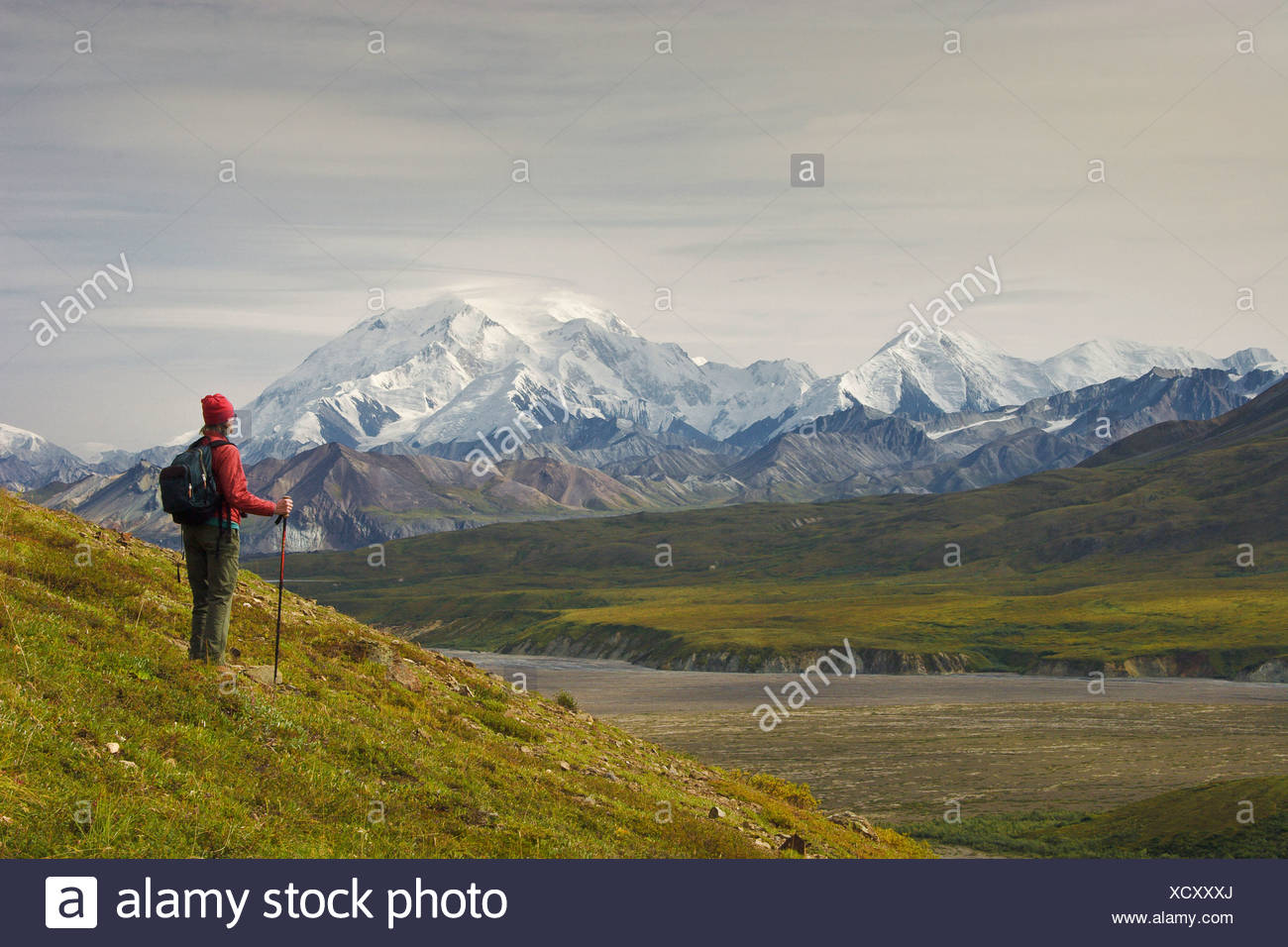 Female hiker views Mt. McKinley in Denali National Park, near Eielson Visitors Center, Alaska, Fall - Stock Image
