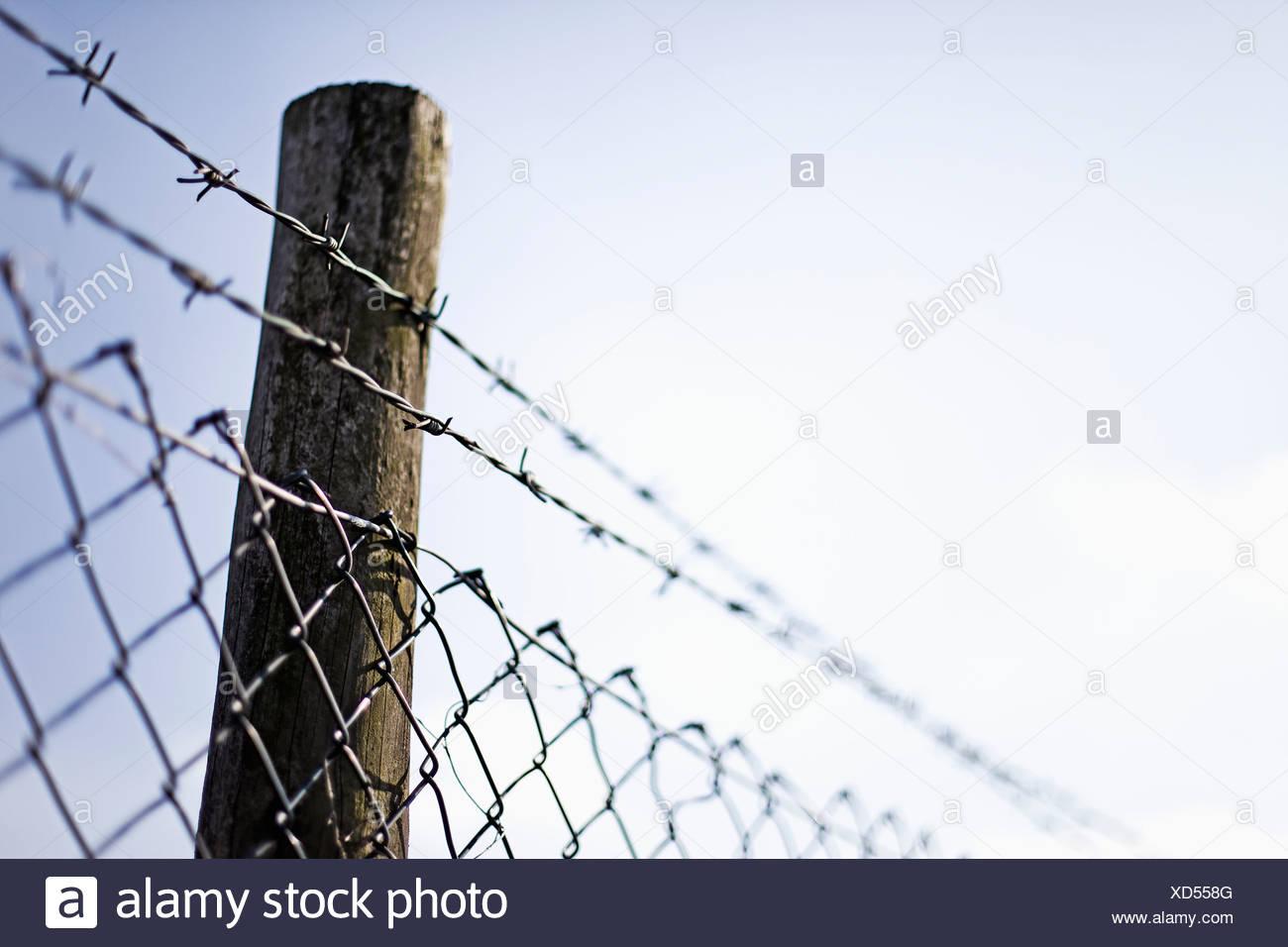 Germany, North Rhine Westphalia, Neuss, Wire mesh fence with pole against sky - Stock Image