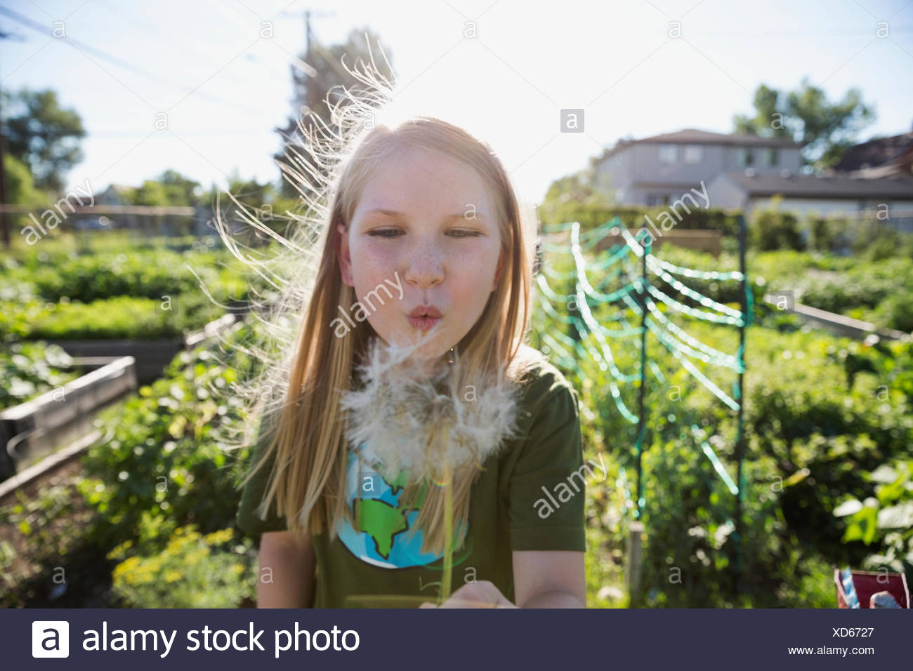 Girl blowing dandelion in sunny garden - Stock Image