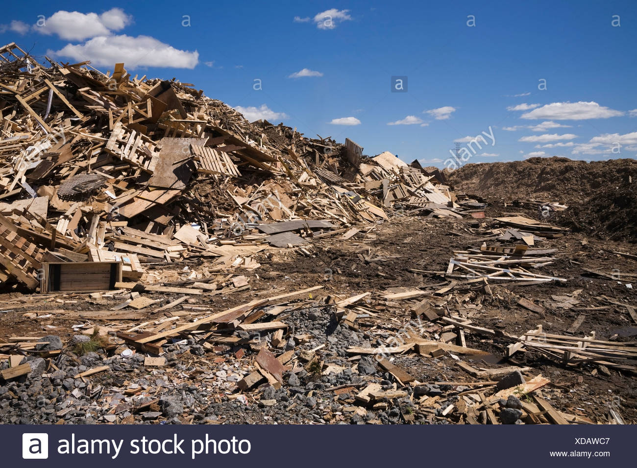 Pile of discarded wood at waste management site - Stock Image