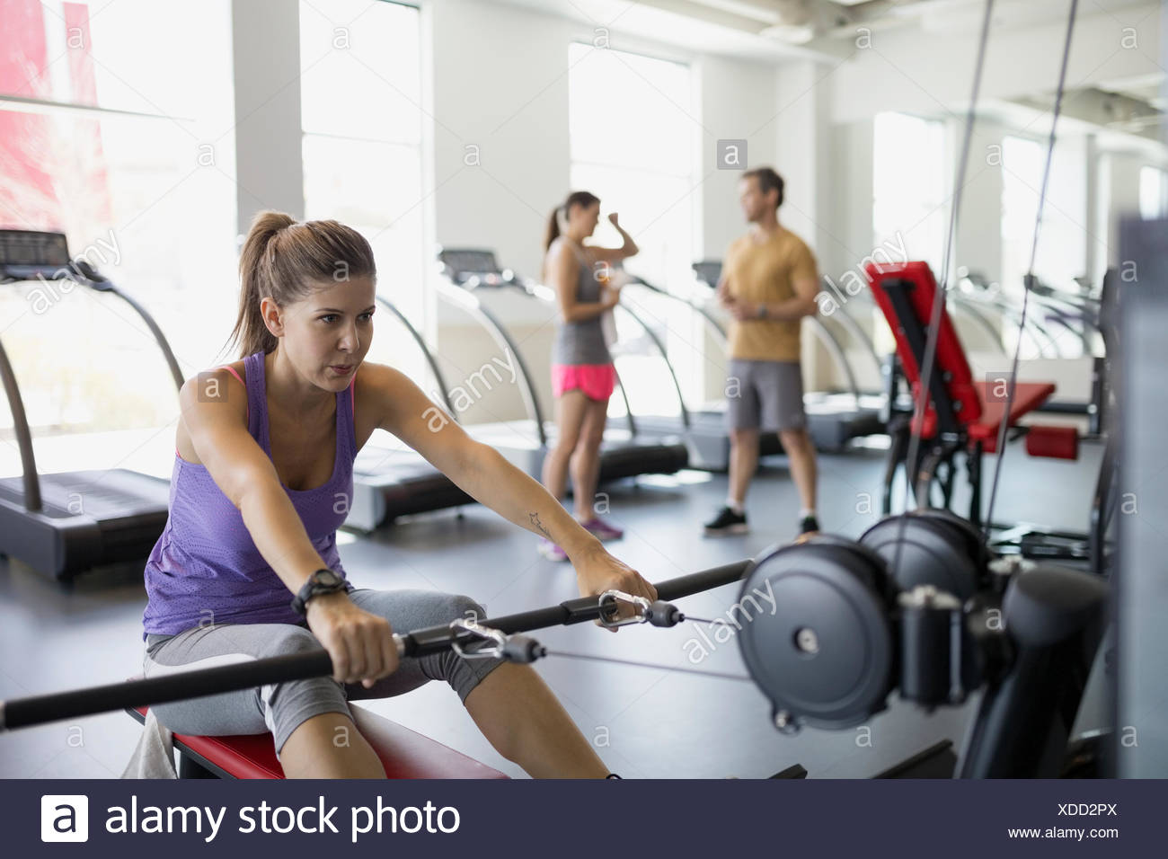 Woman doing cable rows at gym - Stock Image