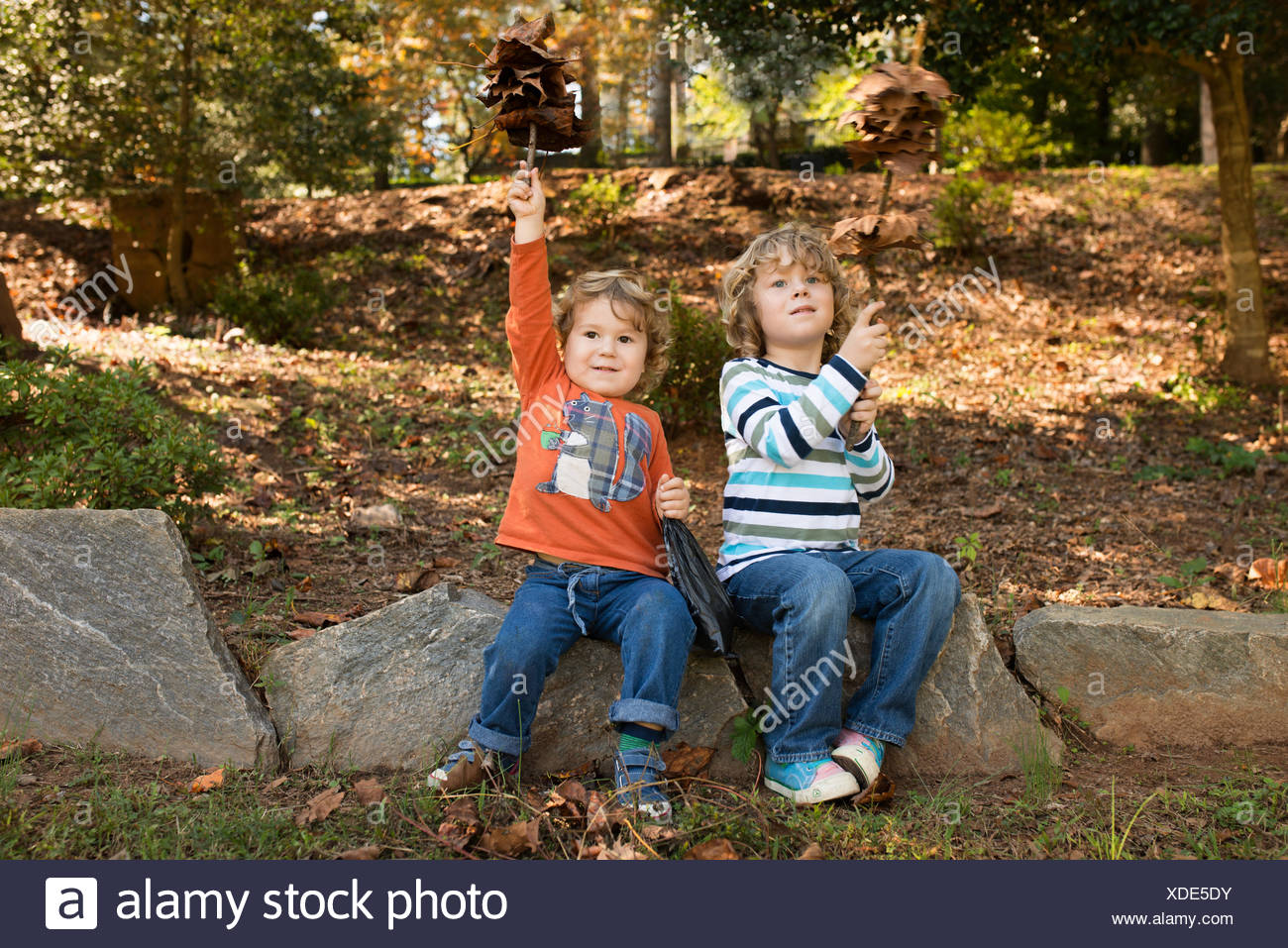 Boys (2-5) having fun in autumn park - Stock Image