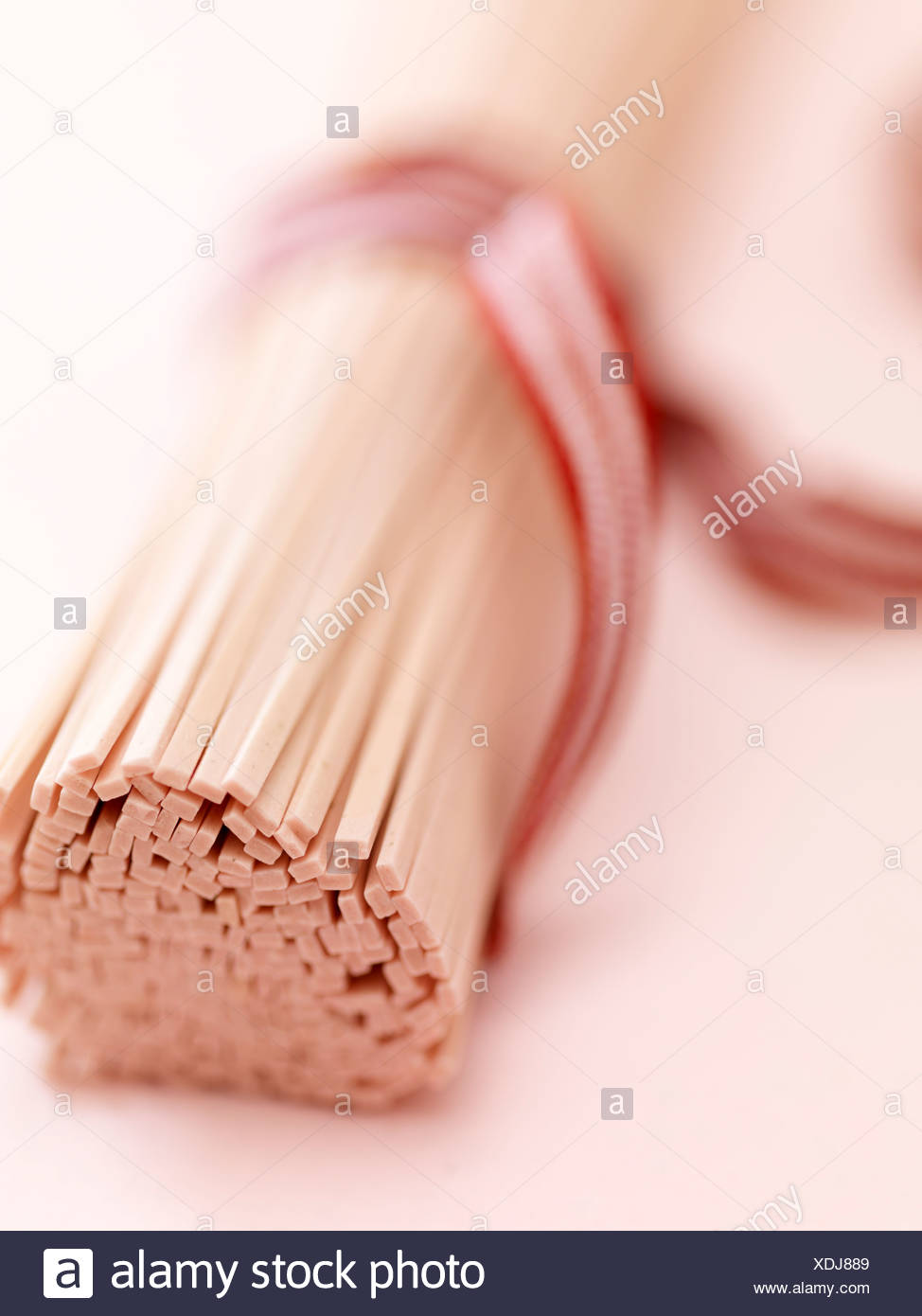 Bundle of udons - Stock Image