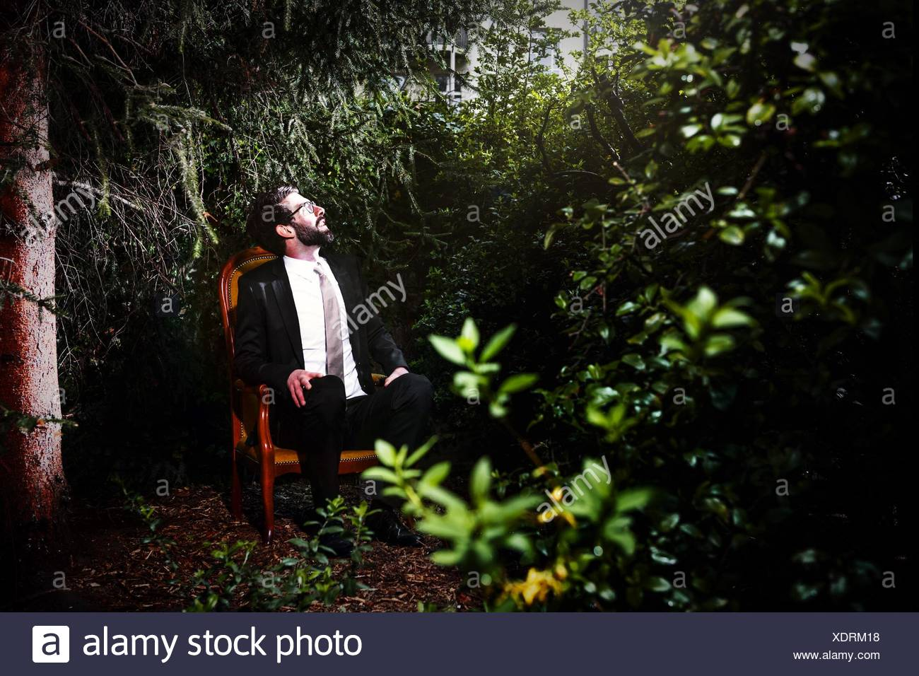 Man Wearing Suit Sitting On Chair In Yard While Looking Up - Stock Image