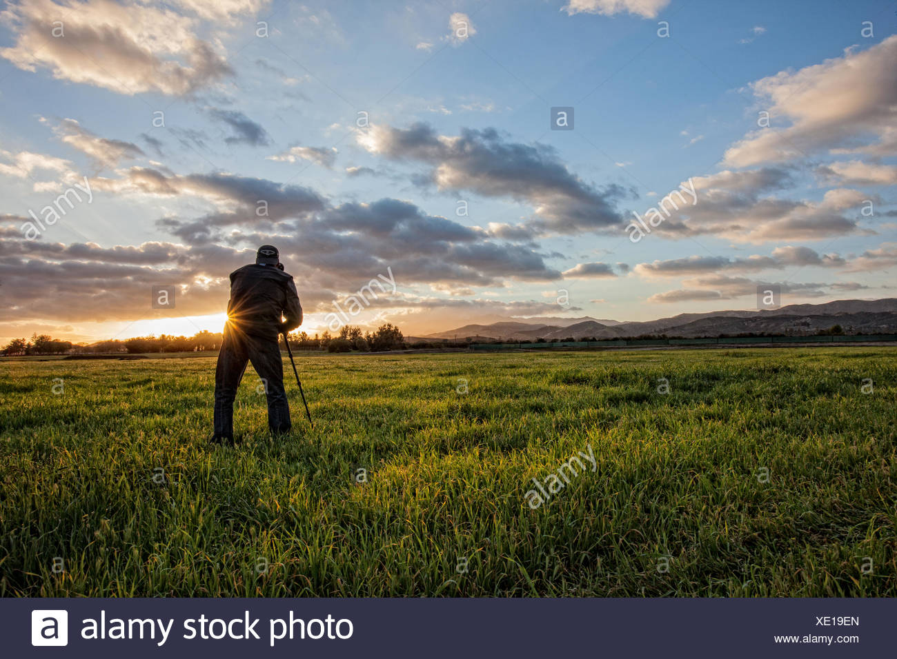 Photographer in the field - Stock Image