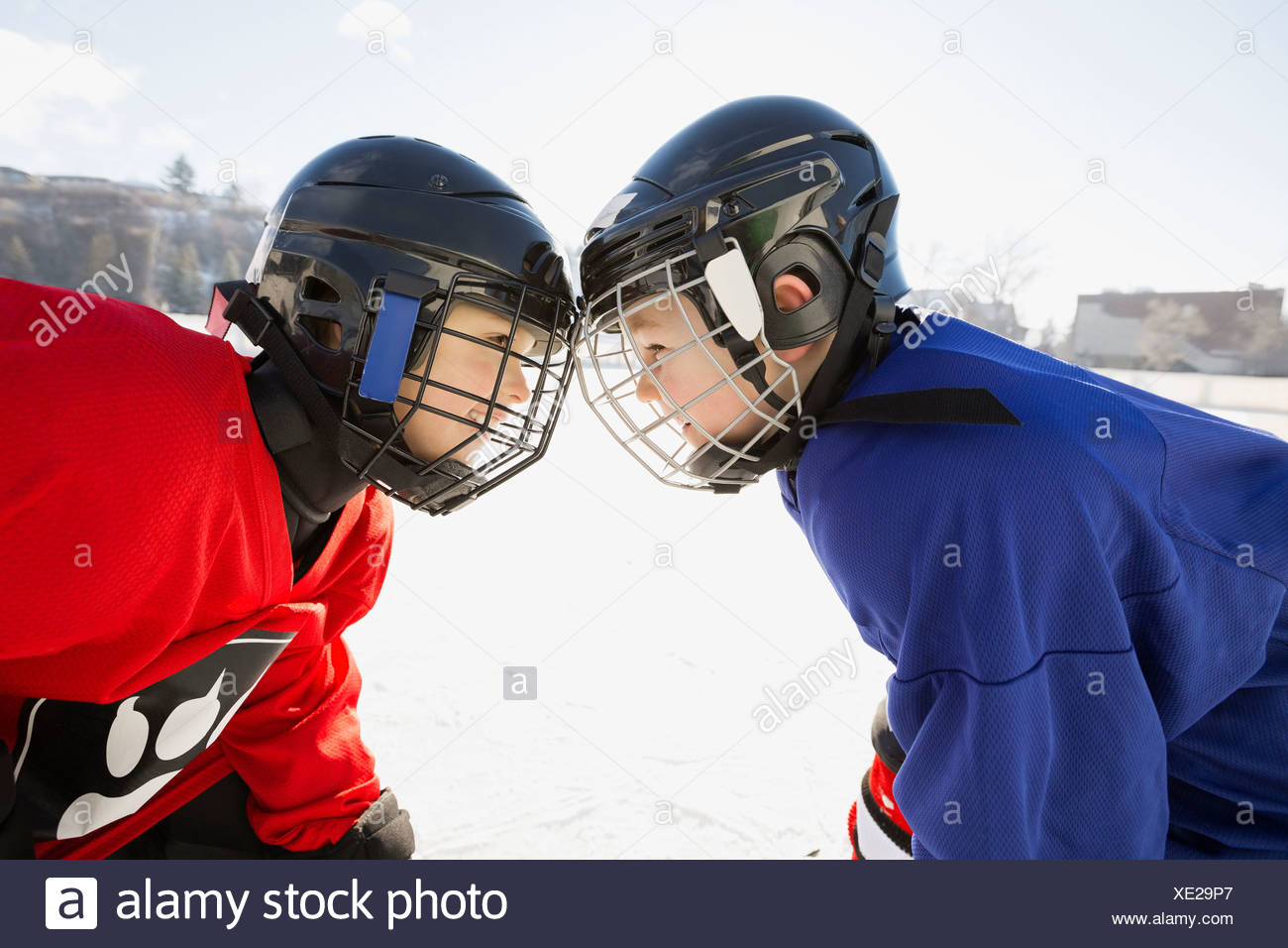 Ice hockey players facing off on rink - Stock Image
