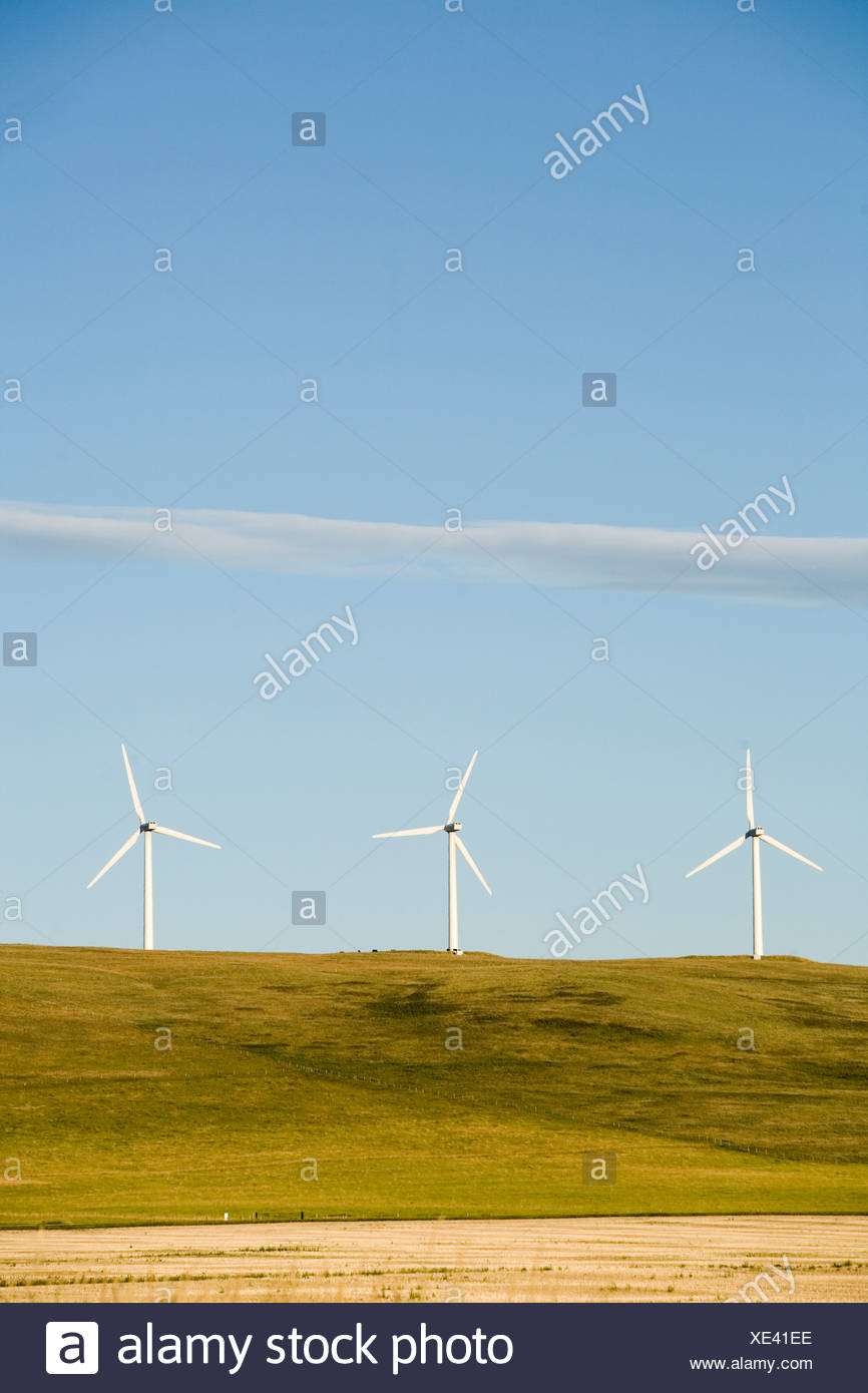 A row of clean energy wind turbines in Montana. - Stock Image