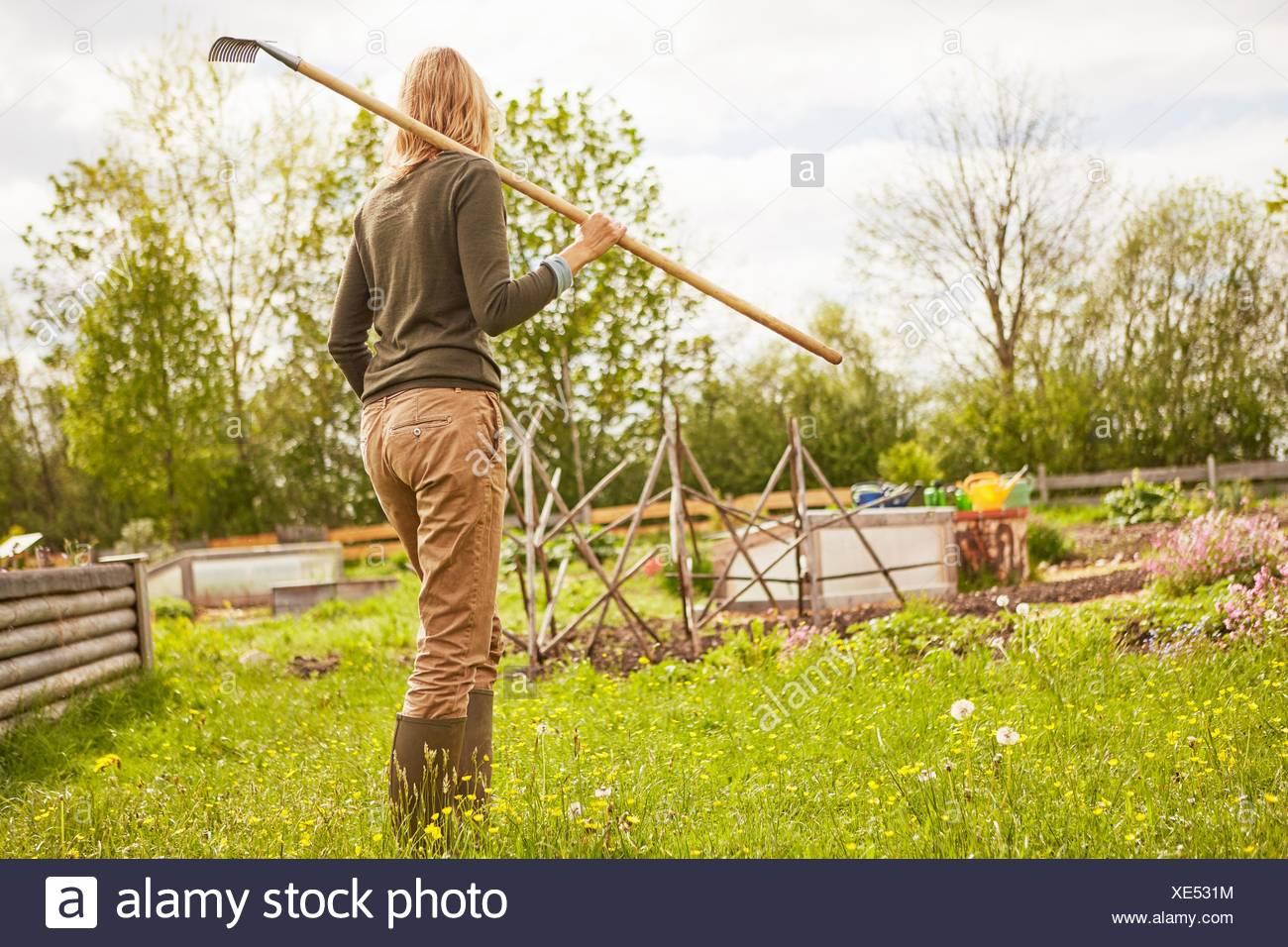 Mature woman, outdoors, gardening, carrying rake, rear view - Stock Image