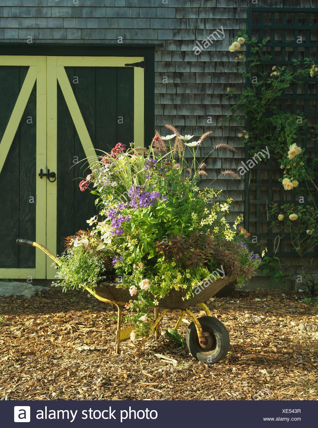 Painted Wheelbarrow Stock Photos & Painted Wheelbarrow Stock Images ...