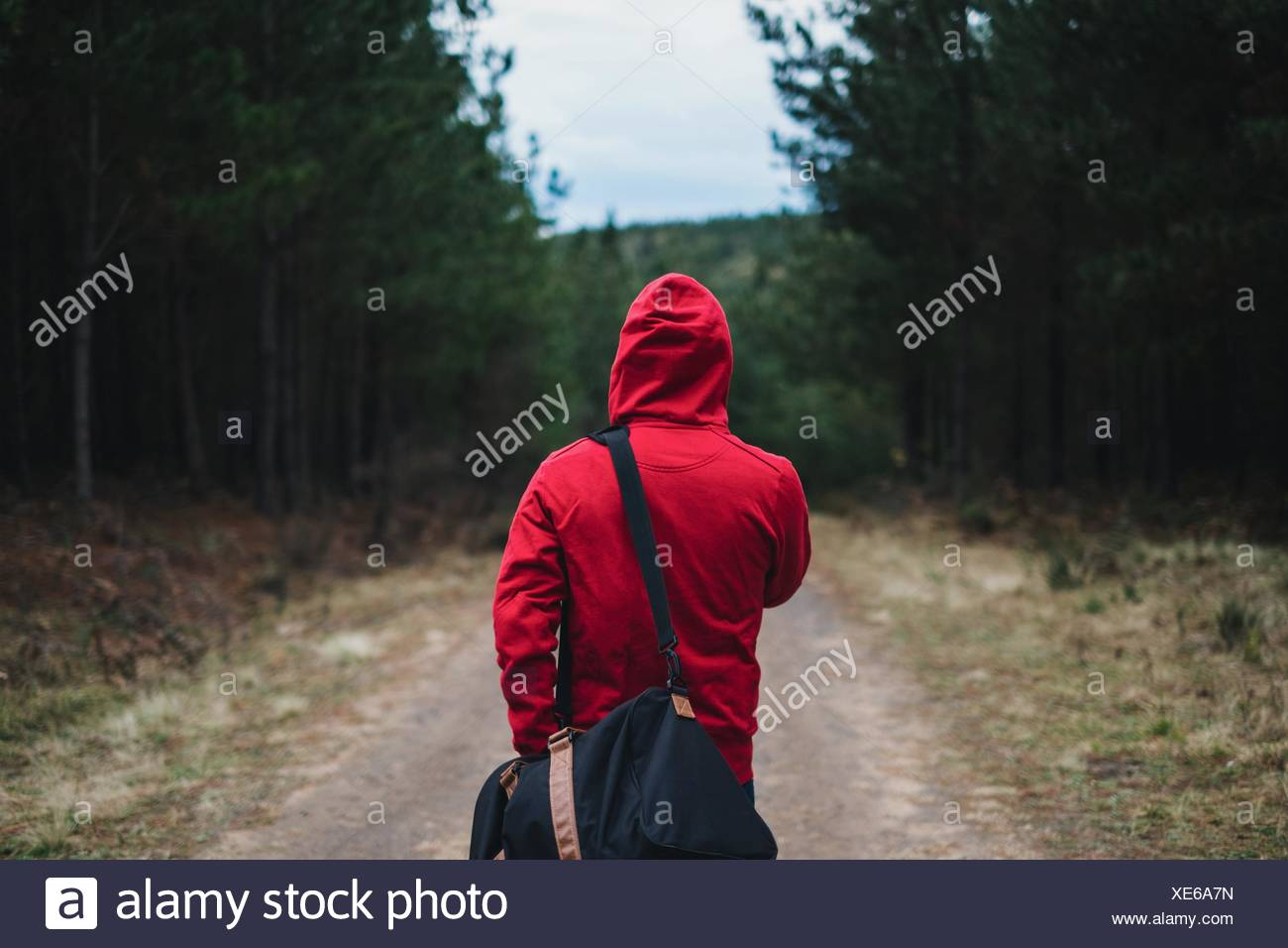 Rear View Of Person In Hooded Shirt Walking With Bag In Belanglo State Forest - Stock Image