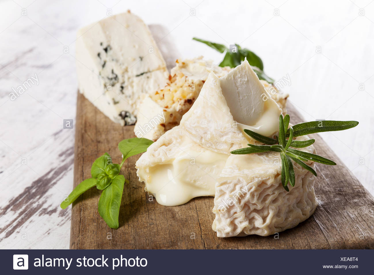 Luxurious cheese variation - Stock Image